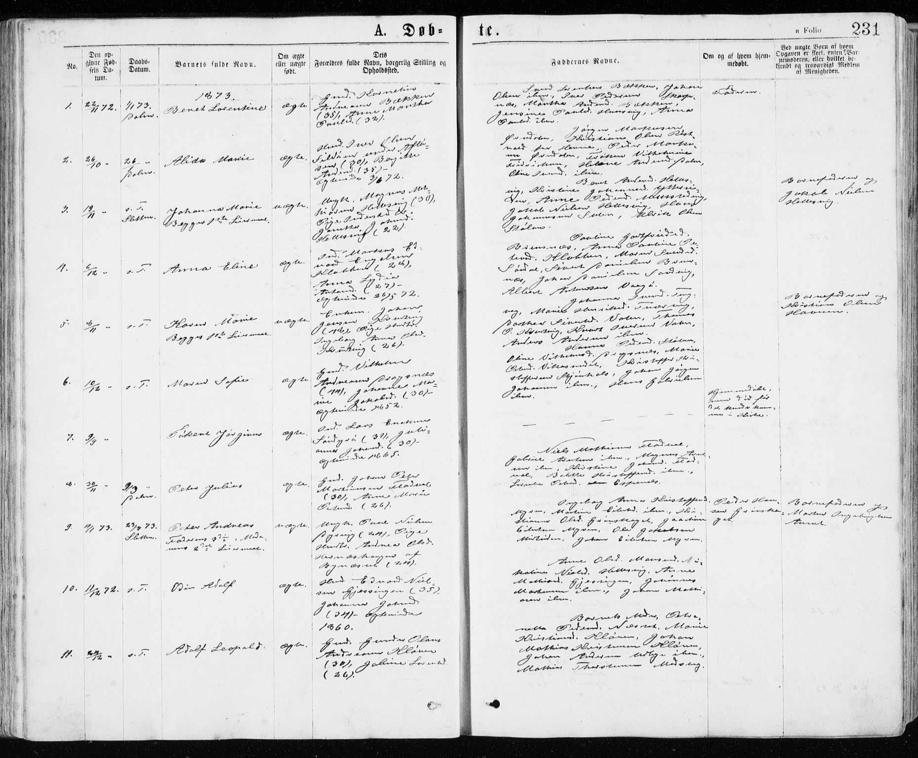 SAT, Ministerialprotokoller, klokkerbøker og fødselsregistre - Sør-Trøndelag, 640/L0576: Ministerialbok nr. 640A01, 1846-1876, s. 231