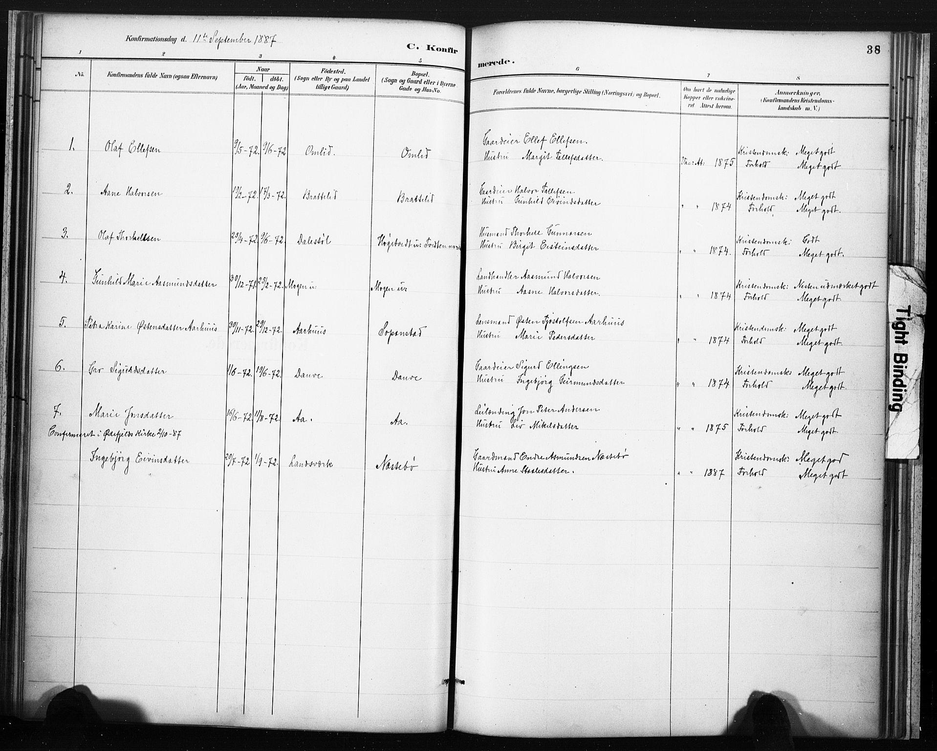 SAKO, Lårdal kirkebøker, F/Fc/L0002: Ministerialbok nr. III 2, 1887-1906, s. 38