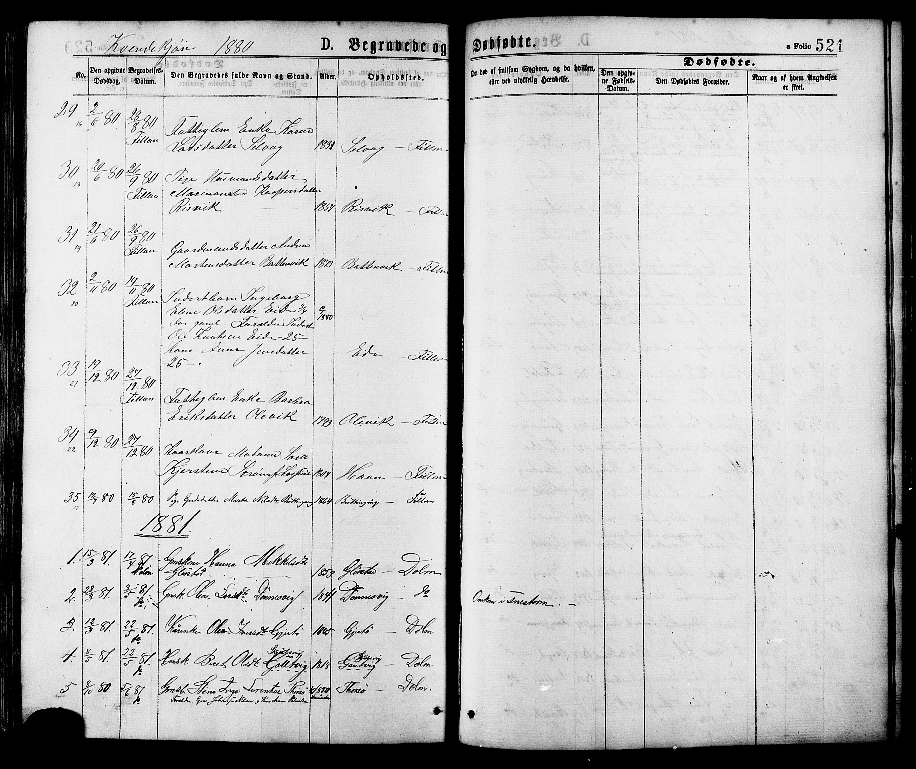 SAT, Ministerialprotokoller, klokkerbøker og fødselsregistre - Sør-Trøndelag, 634/L0532: Ministerialbok nr. 634A08, 1871-1881, s. 521
