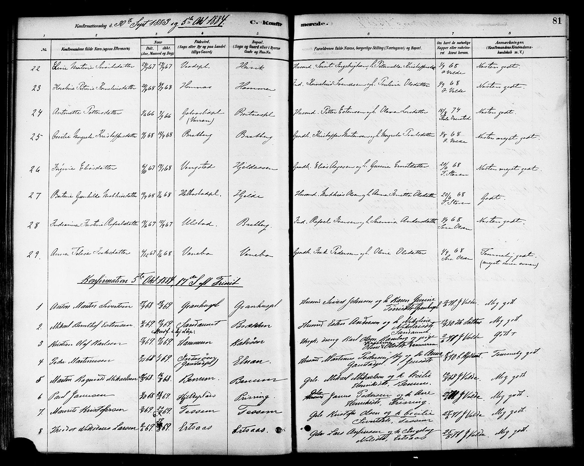 SAT, Ministerialprotokoller, klokkerbøker og fødselsregistre - Nord-Trøndelag, 741/L0395: Ministerialbok nr. 741A09, 1878-1888, s. 81