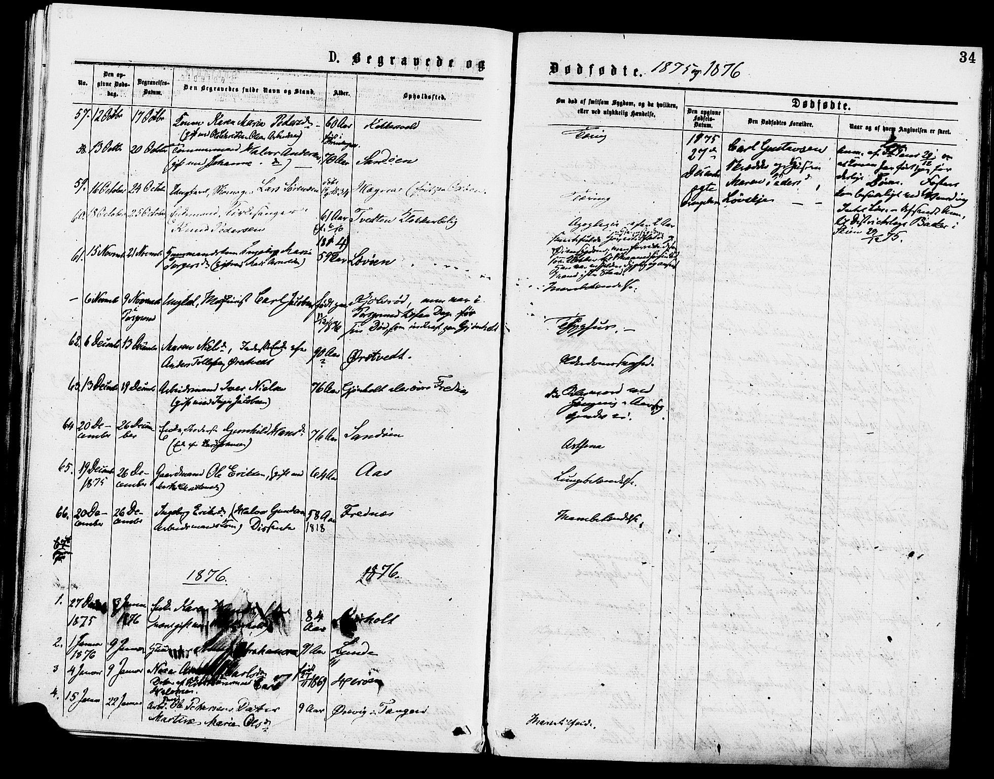 SAKO, Eidanger kirkebøker, F/Fa/L0011: Ministerialbok nr. 11, 1875-1878, s. 34
