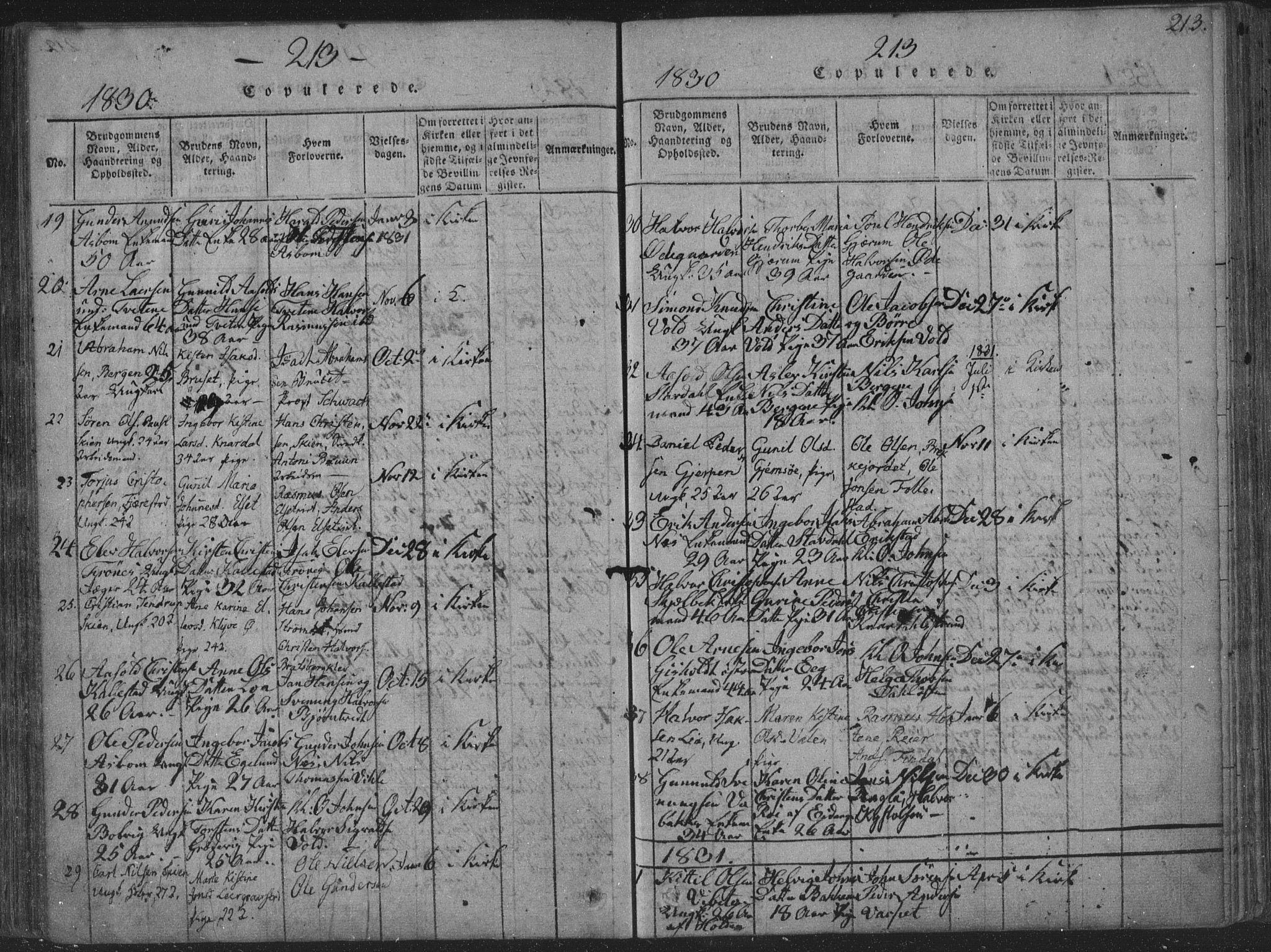 SAKO, Solum kirkebøker, F/Fa/L0004: Ministerialbok nr. I 4, 1814-1833, s. 213