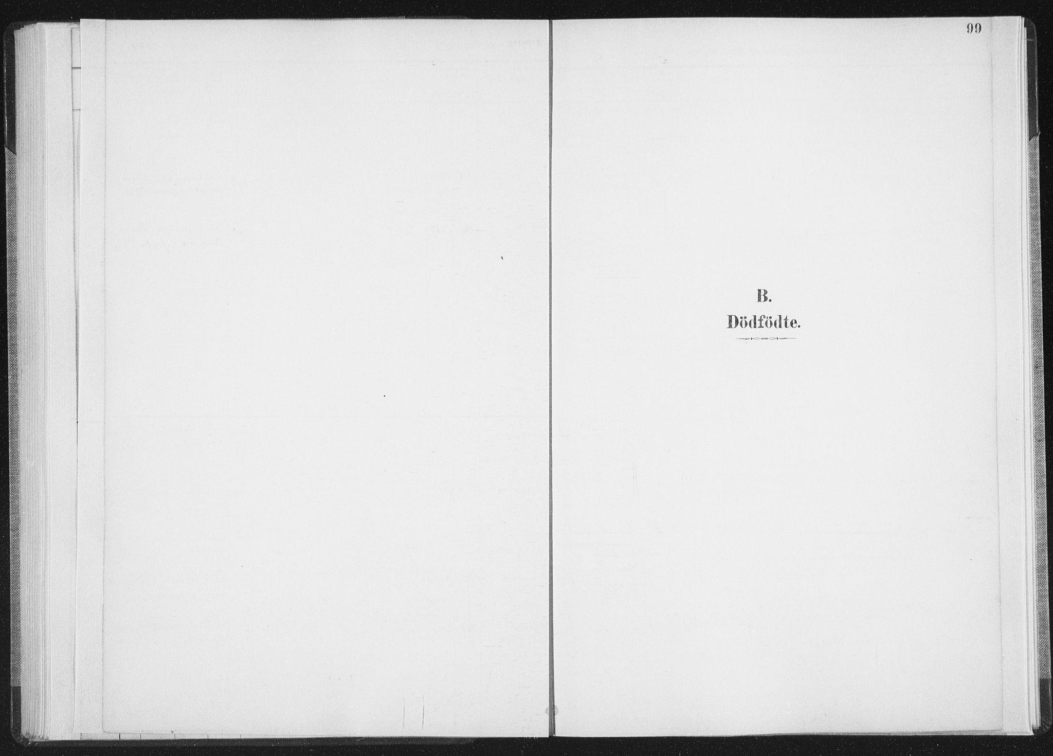 SAT, Ministerialprotokoller, klokkerbøker og fødselsregistre - Nordland, 898/L1422: Ministerialbok nr. 898A02, 1887-1908, s. 99