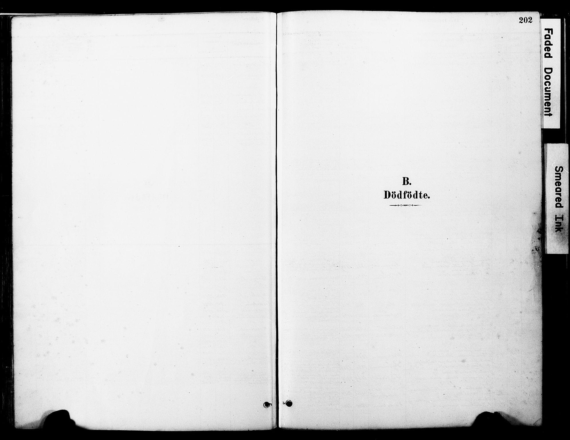 SAT, Ministerialprotokoller, klokkerbøker og fødselsregistre - Nord-Trøndelag, 723/L0244: Ministerialbok nr. 723A13, 1881-1899, s. 202
