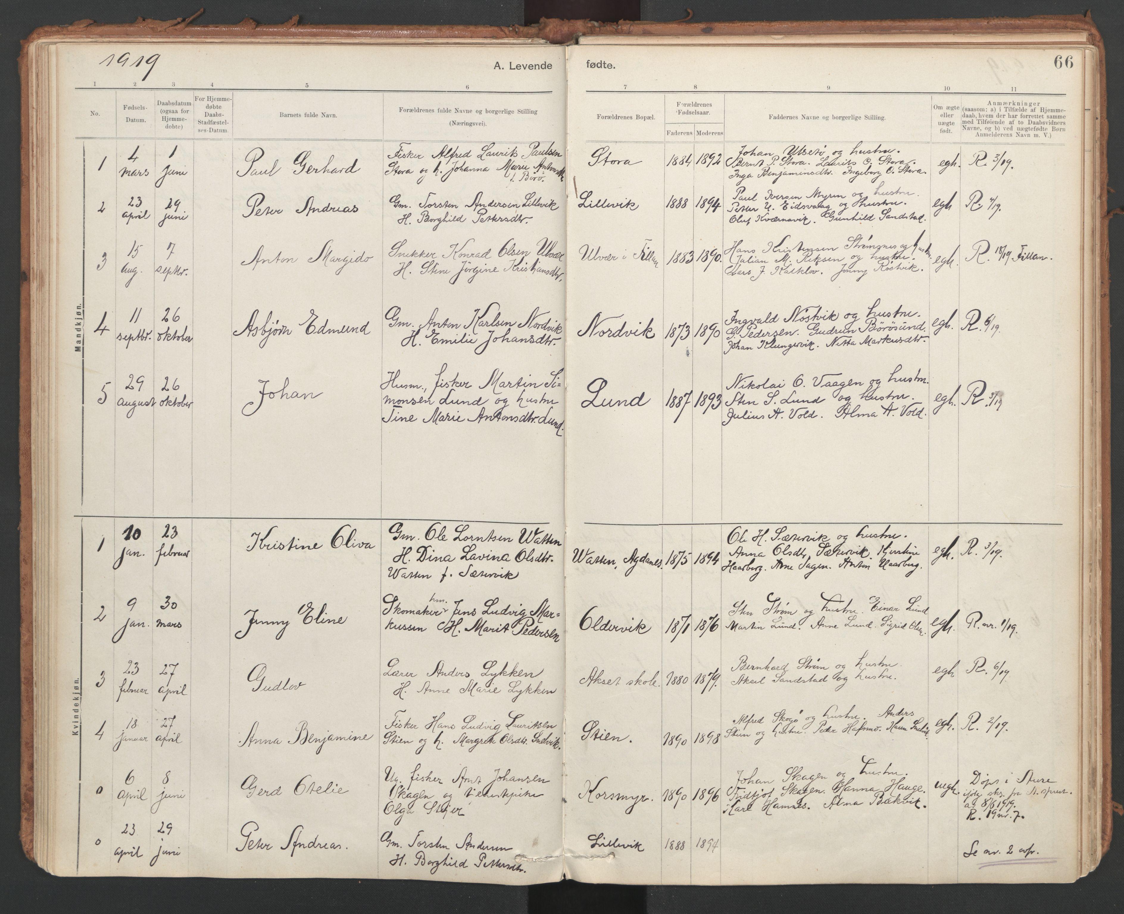 SAT, Ministerialprotokoller, klokkerbøker og fødselsregistre - Sør-Trøndelag, 639/L0572: Ministerialbok nr. 639A01, 1890-1920, s. 66