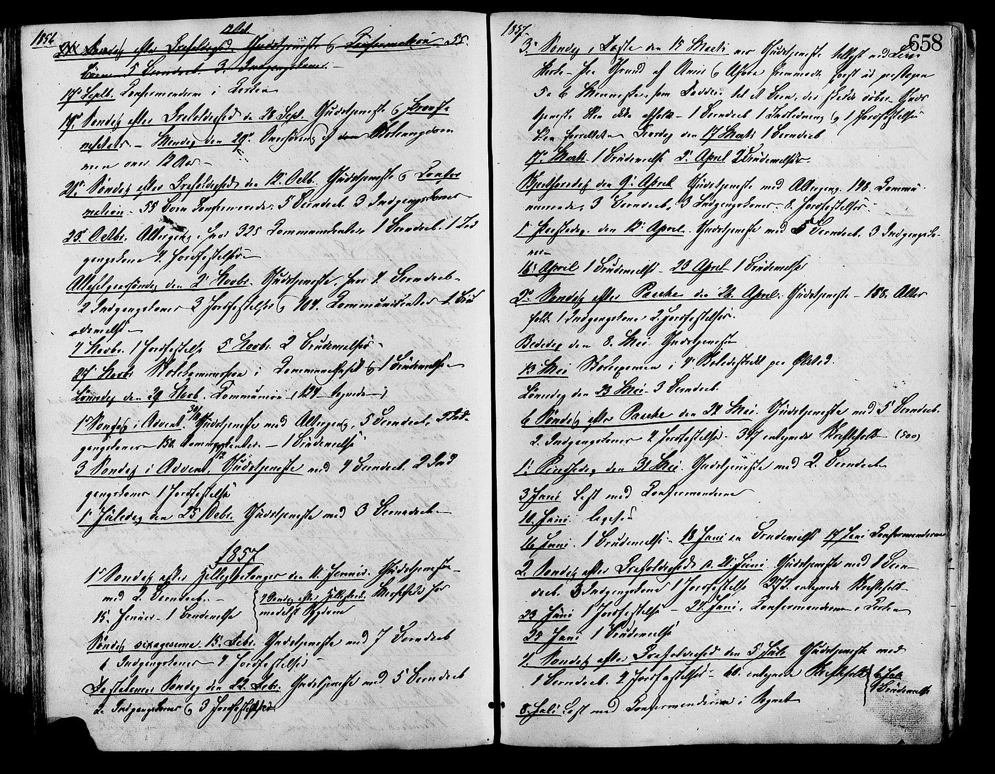 SAH, Lesja prestekontor, Ministerialbok nr. 8, 1854-1880, s. 658
