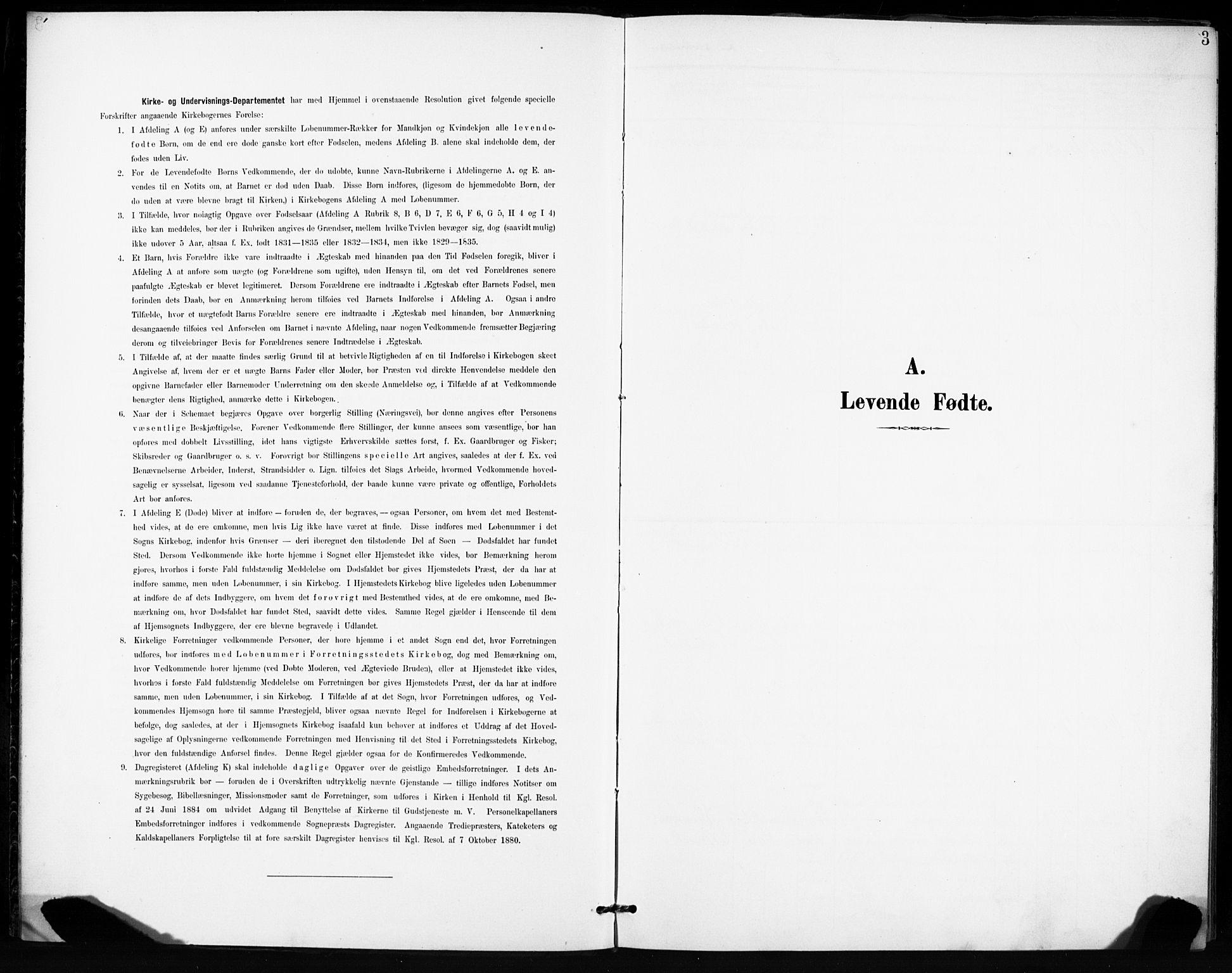SAT, Ministerialprotokoller, klokkerbøker og fødselsregistre - Sør-Trøndelag, 666/L0787: Ministerialbok nr. 666A05, 1895-1908, s. 3