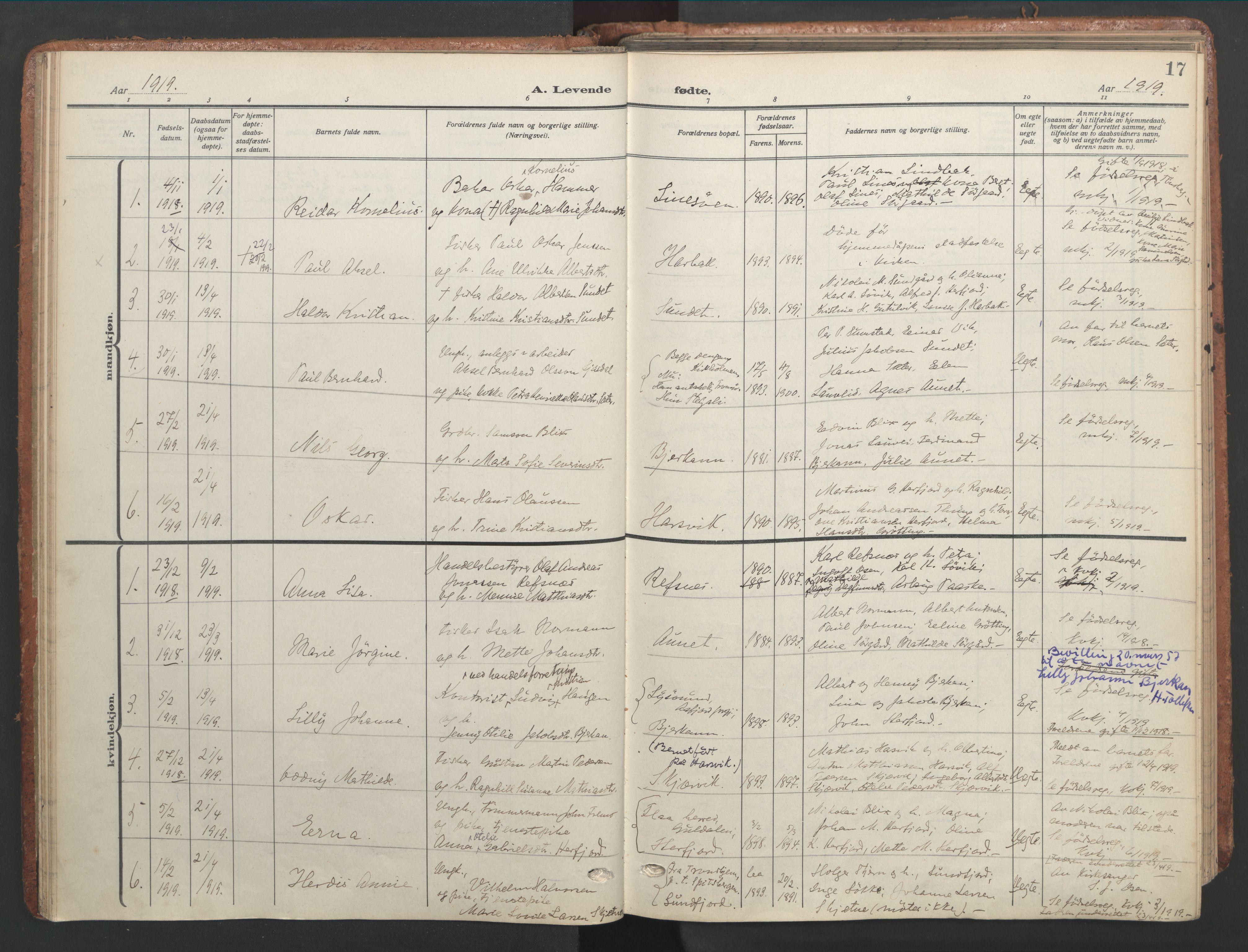 SAT, Ministerialprotokoller, klokkerbøker og fødselsregistre - Sør-Trøndelag, 656/L0694: Ministerialbok nr. 656A03, 1914-1931, s. 17