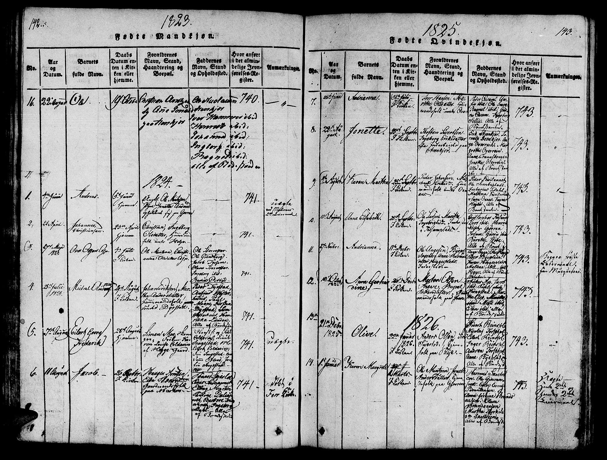 SAT, Ministerialprotokoller, klokkerbøker og fødselsregistre - Nord-Trøndelag, 746/L0441: Ministerialbok nr. 736A03 /3, 1816-1827, s. 142-143