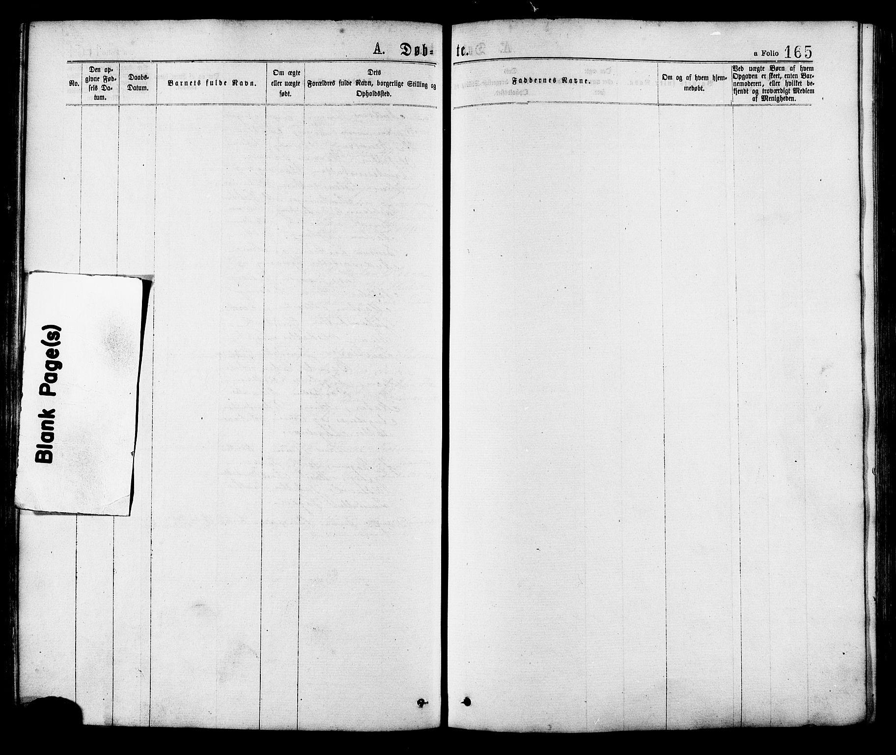 SAT, Ministerialprotokoller, klokkerbøker og fødselsregistre - Sør-Trøndelag, 634/L0532: Ministerialbok nr. 634A08, 1871-1881, s. 165