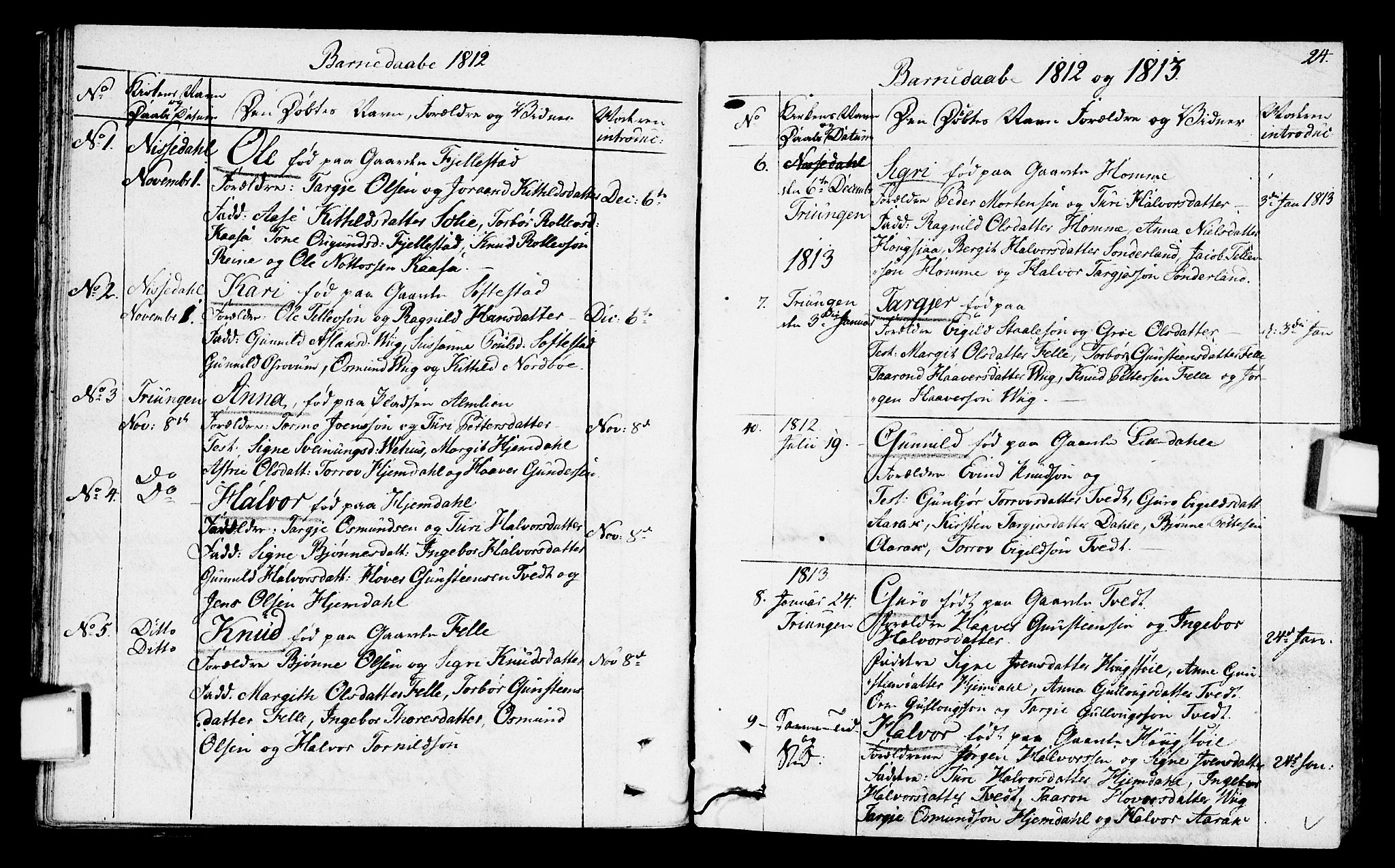 SAKO, Nissedal kirkebøker, F/Fa/L0001: Ministerialbok nr. I 1, 1811-1814, s. 24