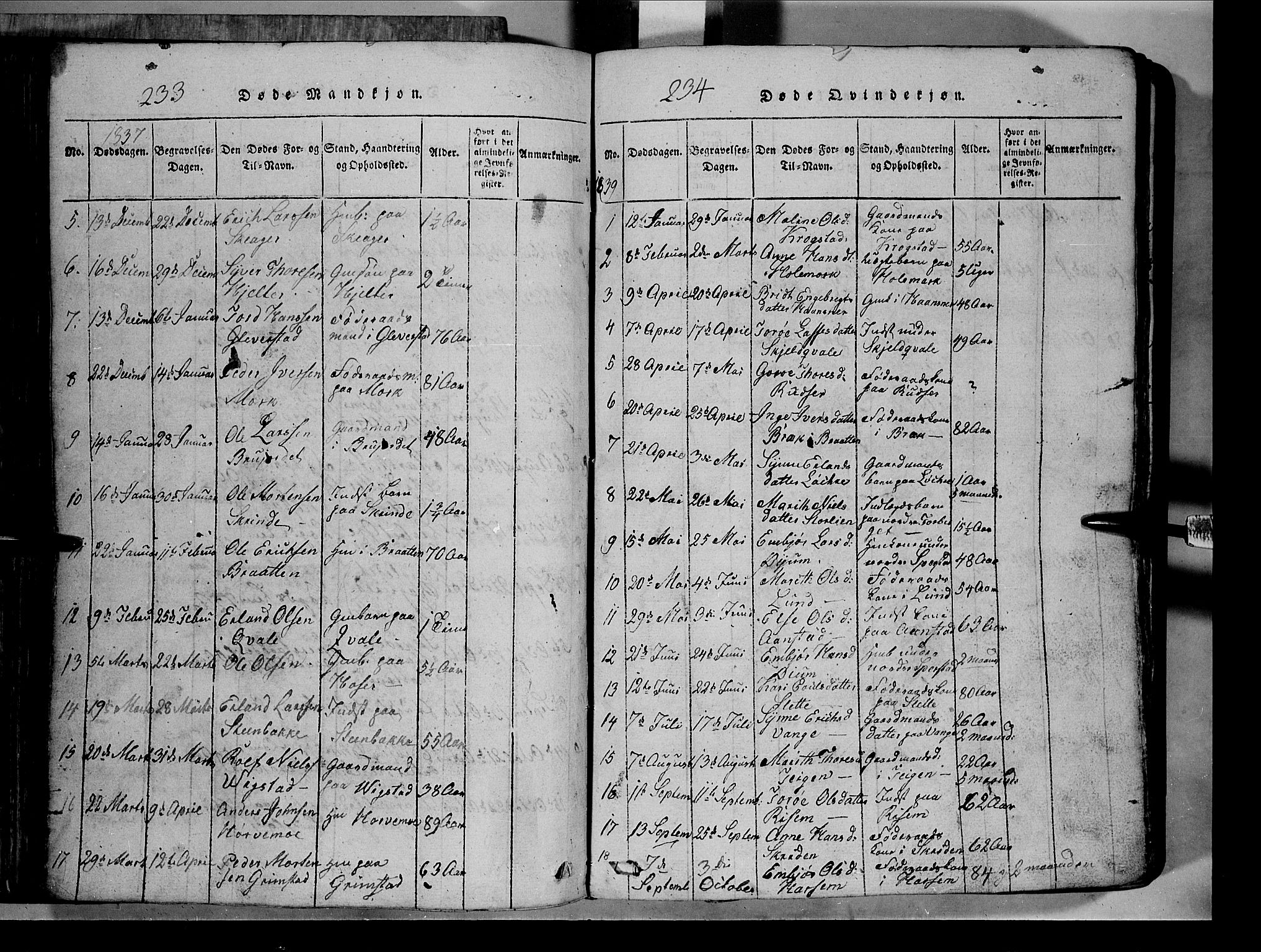 SAH, Lom prestekontor, L/L0003: Klokkerbok nr. 3, 1815-1844, s. 233-234
