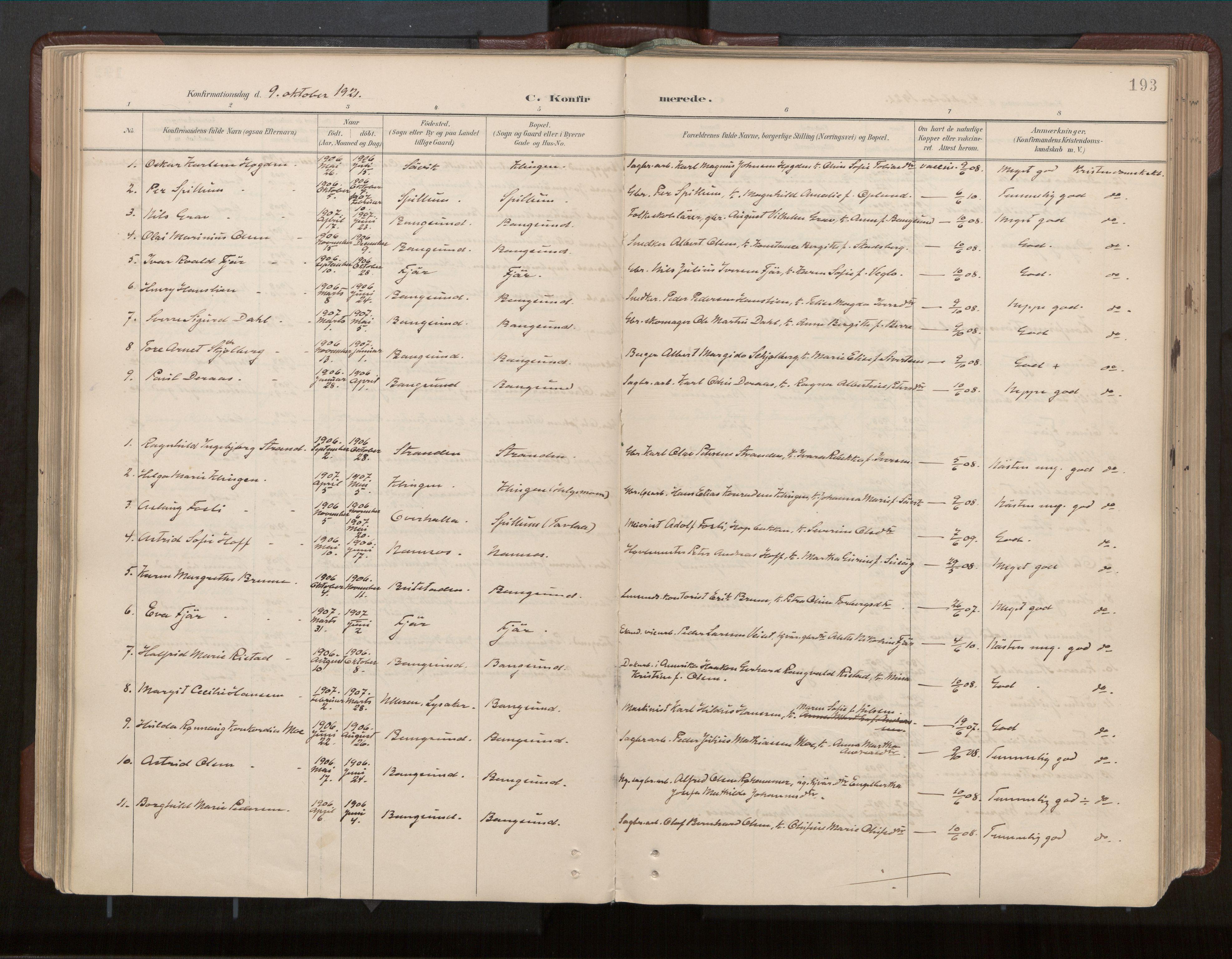 SAT, Ministerialprotokoller, klokkerbøker og fødselsregistre - Nord-Trøndelag, 770/L0589: Ministerialbok nr. 770A03, 1887-1929, s. 193