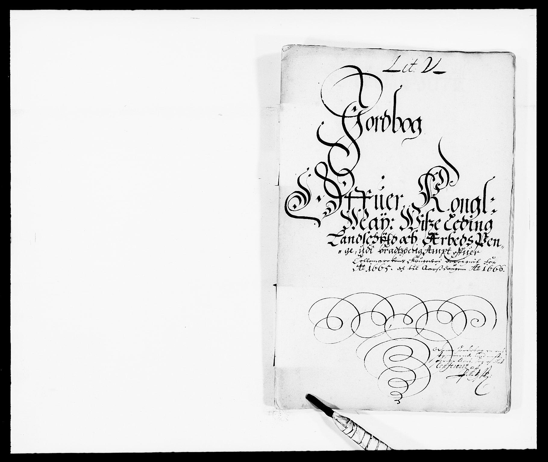 RA, Rentekammeret inntil 1814, Reviderte regnskaper, Fogderegnskap, R35/L2056: Fogderegnskap Øvre og Nedre Telemark, 1665, s. 207