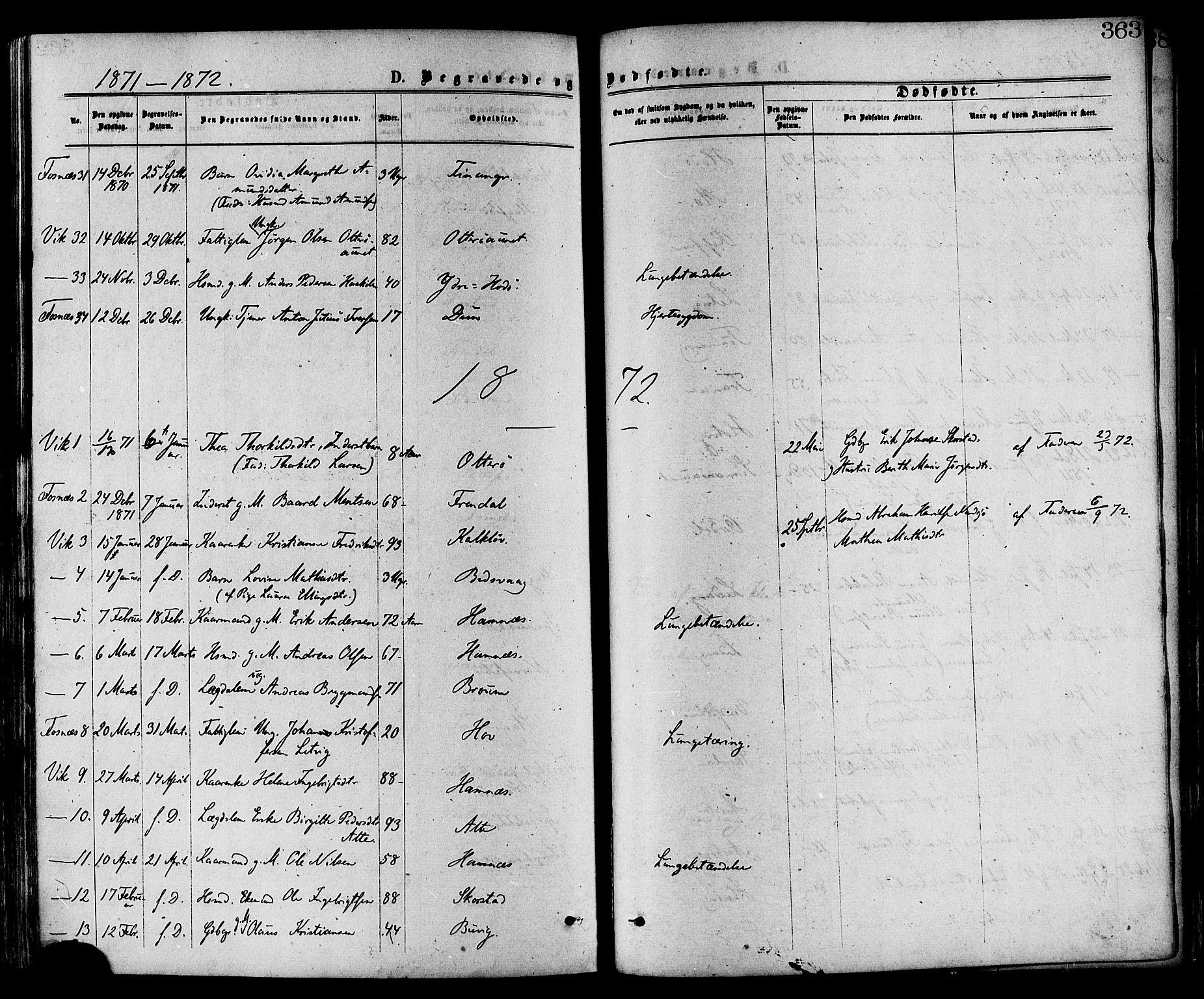 SAT, Ministerialprotokoller, klokkerbøker og fødselsregistre - Nord-Trøndelag, 773/L0616: Ministerialbok nr. 773A07, 1870-1887, s. 363