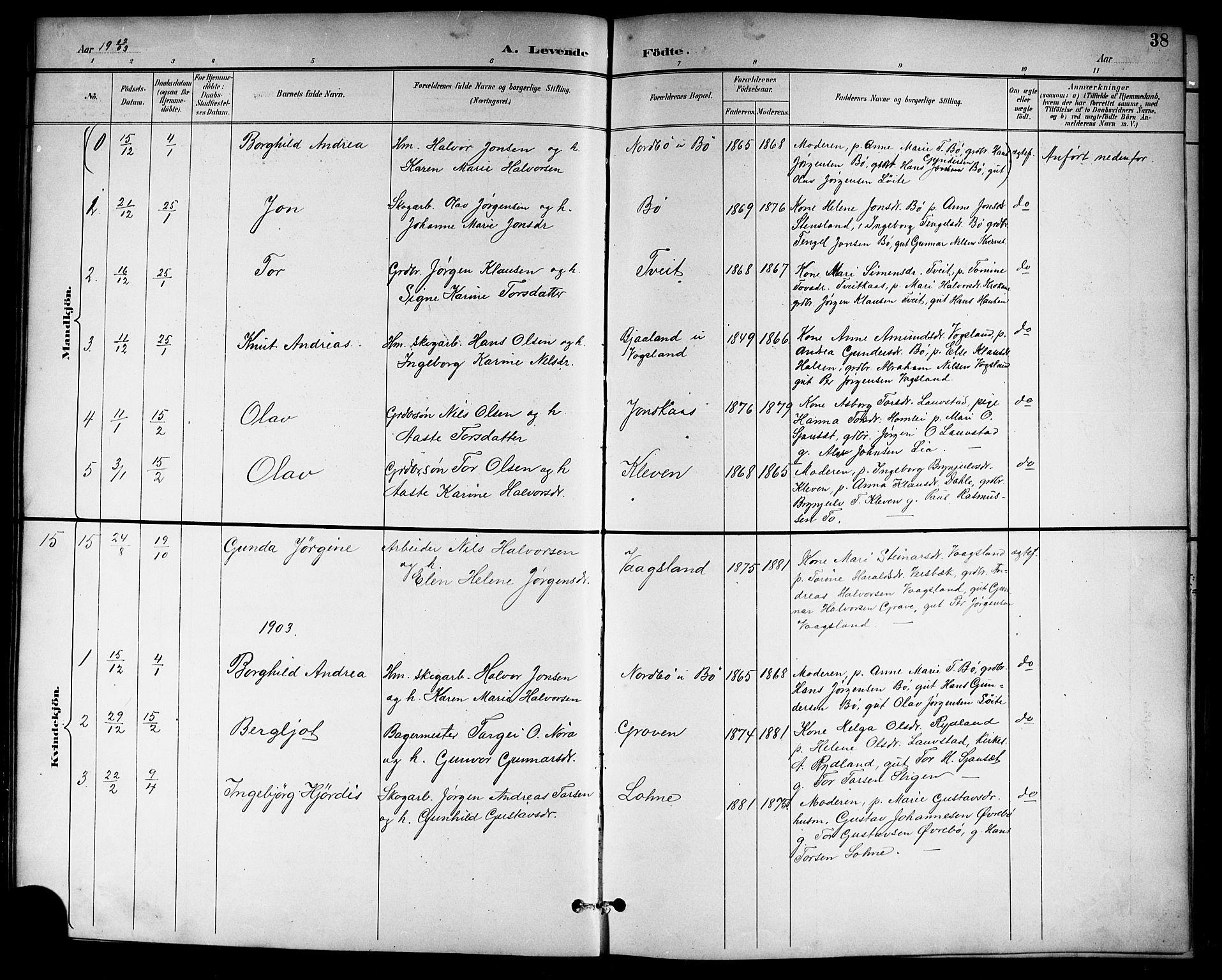 SAKO, Drangedal kirkebøker, G/Gb/L0002: Klokkerbok nr. II 2, 1895-1918, s. 38