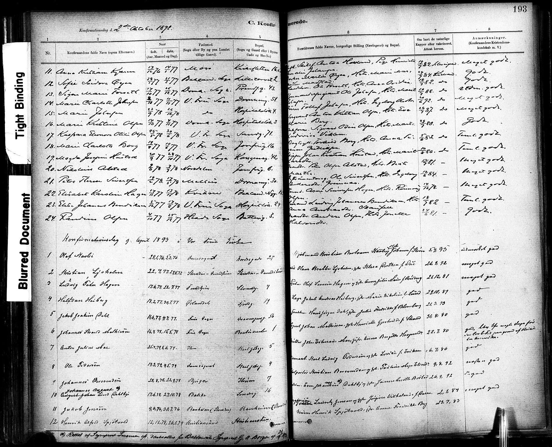 SAT, Ministerialprotokoller, klokkerbøker og fødselsregistre - Sør-Trøndelag, 602/L0119: Ministerialbok nr. 602A17, 1880-1901, s. 193