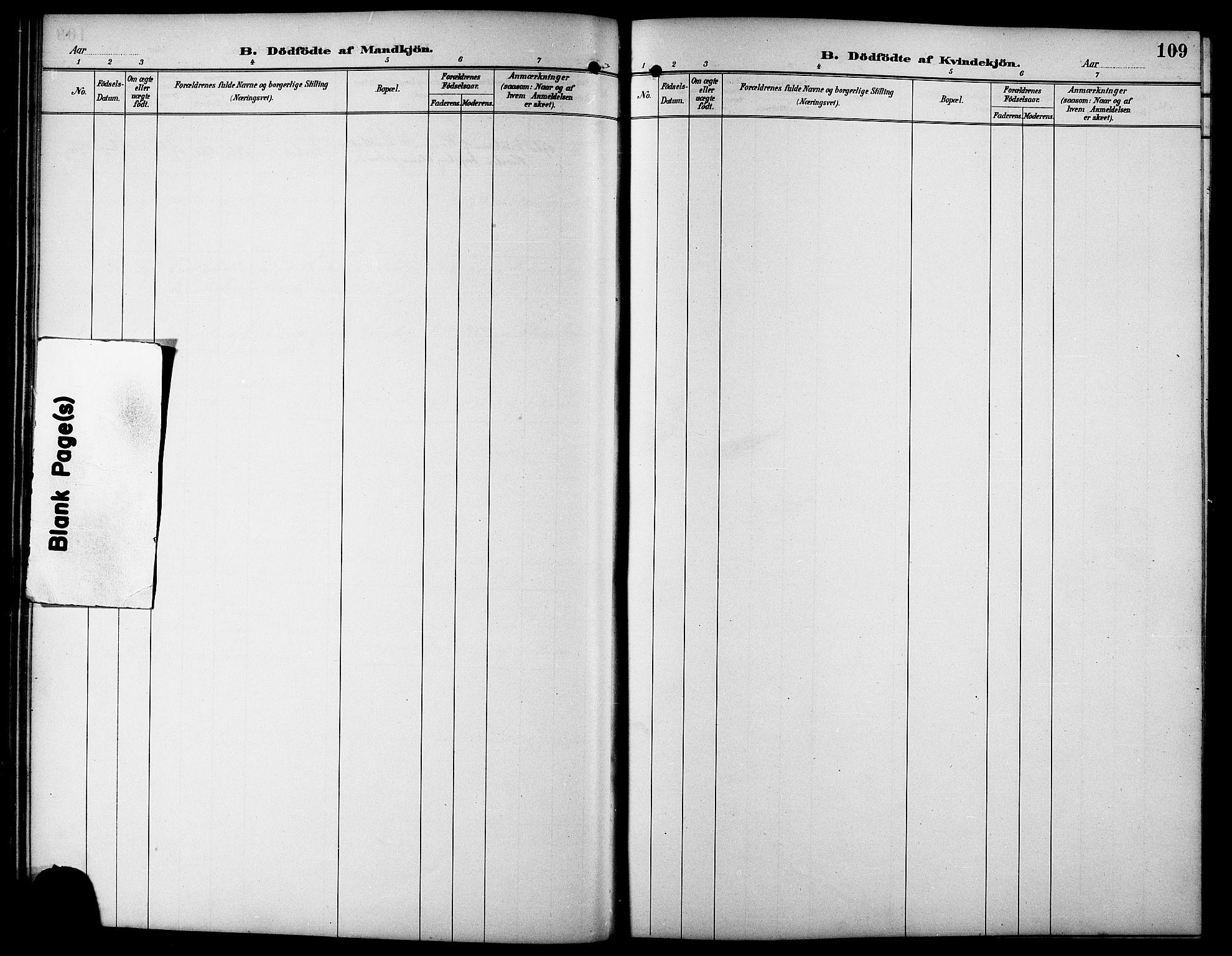 SAT, Ministerialprotokoller, klokkerbøker og fødselsregistre - Sør-Trøndelag, 617/L0431: Klokkerbok nr. 617C01, 1889-1910, s. 109
