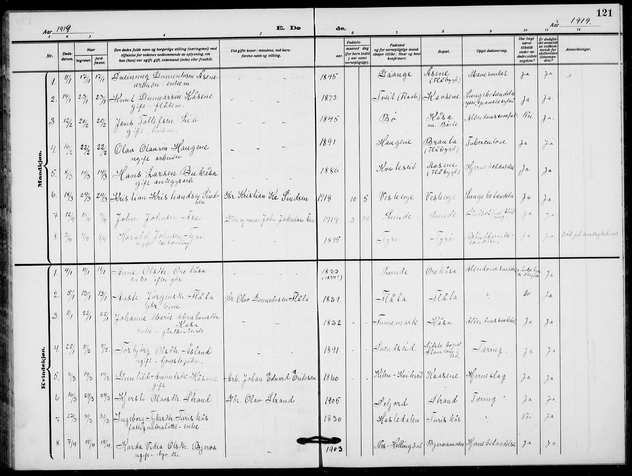 SAKO, Lunde kirkebøker, F/Fa/L0005: Ministerialbok nr. I 5, 1914-1922, s. 121