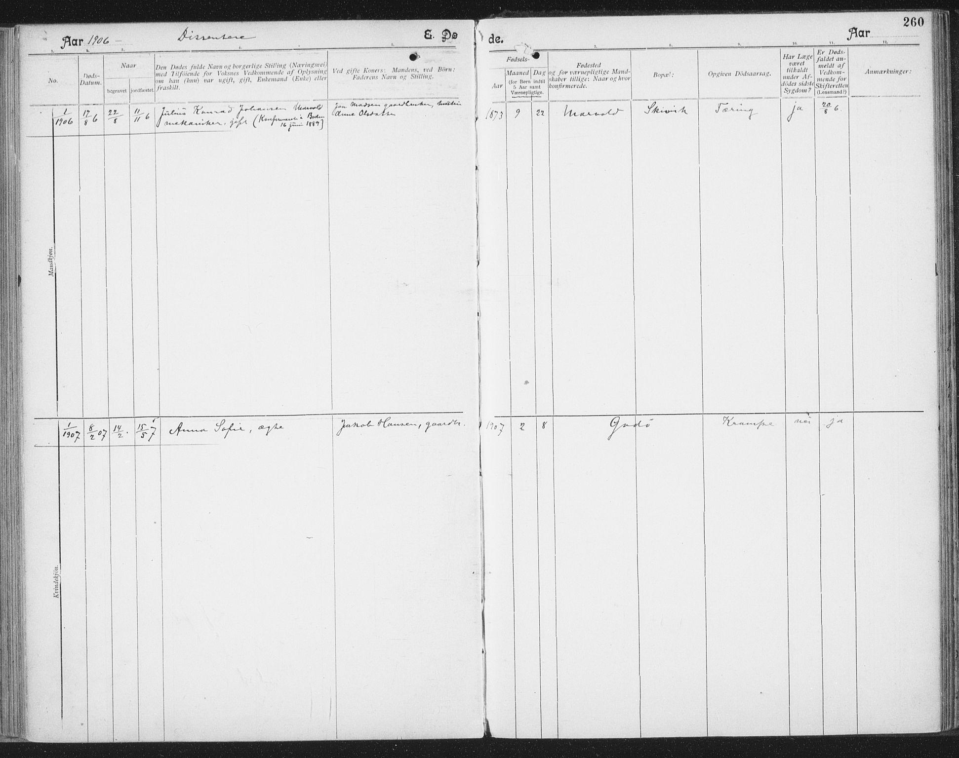 SAT, Ministerialprotokoller, klokkerbøker og fødselsregistre - Nordland, 804/L0081: Ministerialbok nr. 804A02, 1901-1915, s. 260