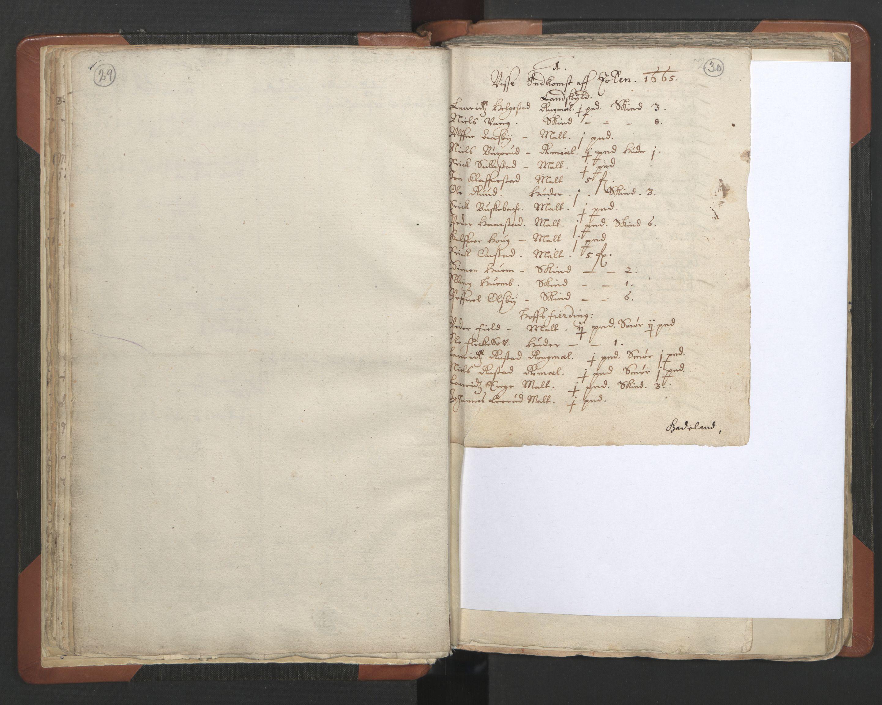 RA, Sogneprestenes manntall 1664-1666, nr. 7: Hadeland prosti, 1664-1666, s. 29-30