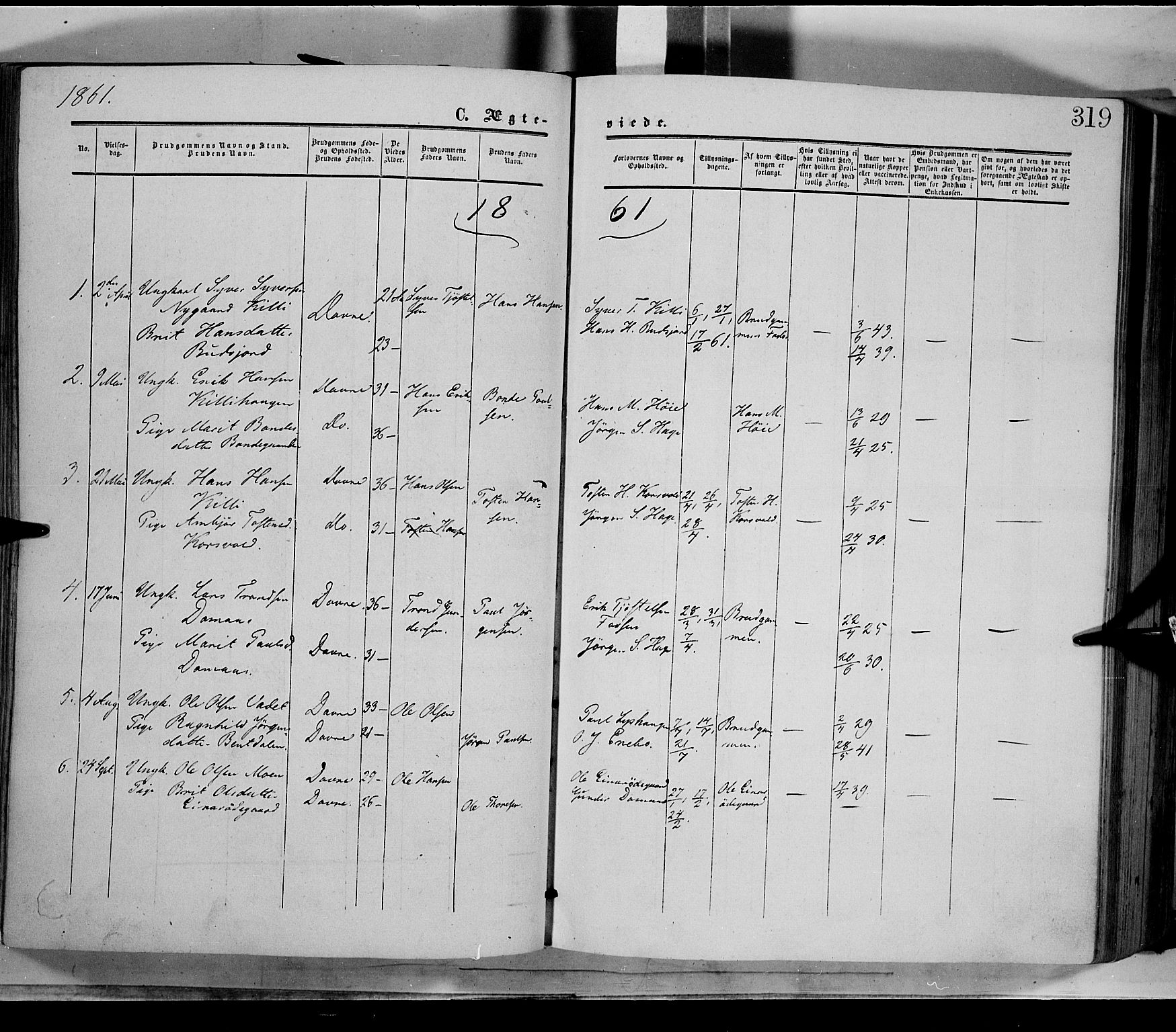 SAH, Dovre prestekontor, Ministerialbok nr. 1, 1854-1878, s. 319