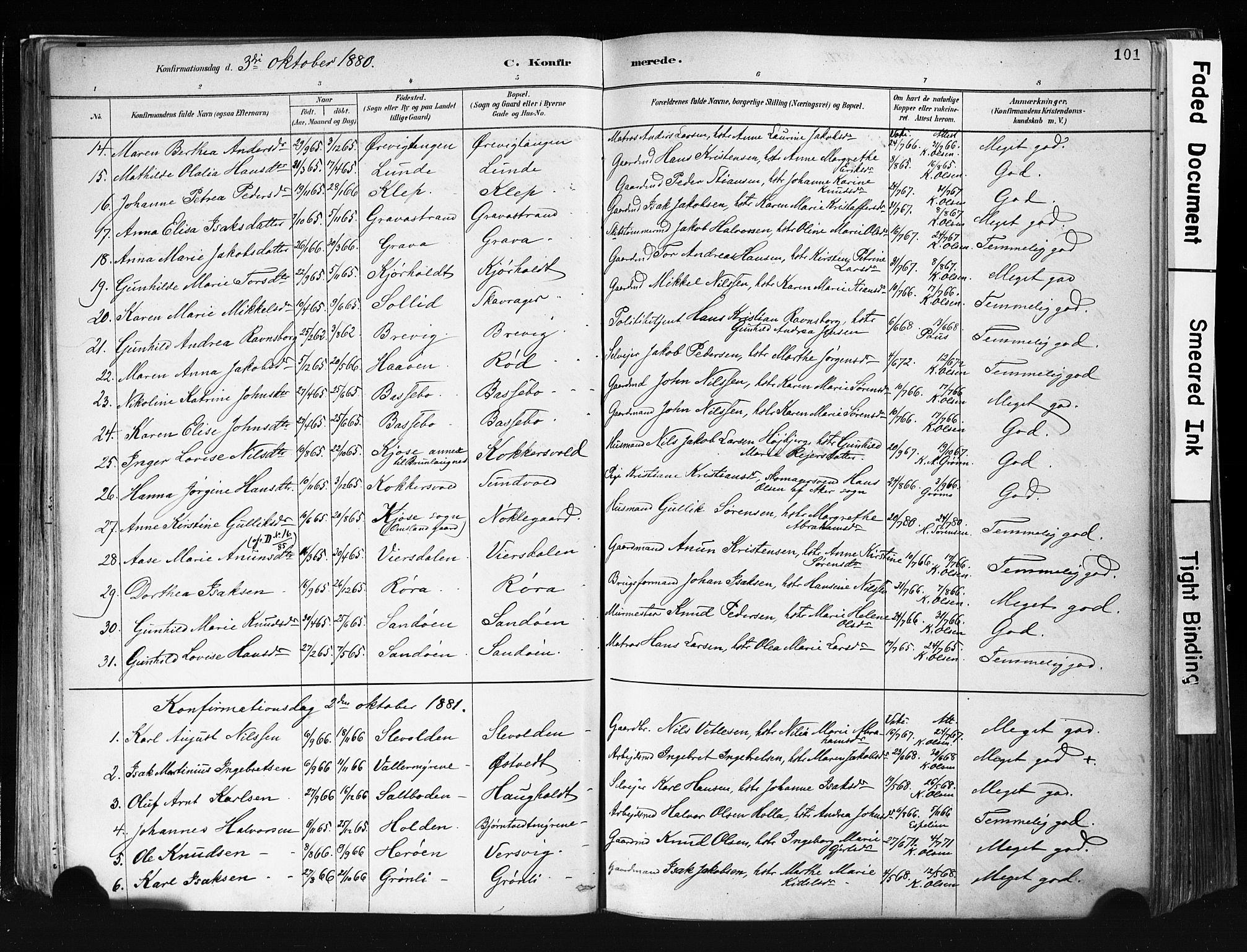 SAKO, Eidanger kirkebøker, F/Fa/L0012: Ministerialbok nr. 12, 1879-1900, s. 101