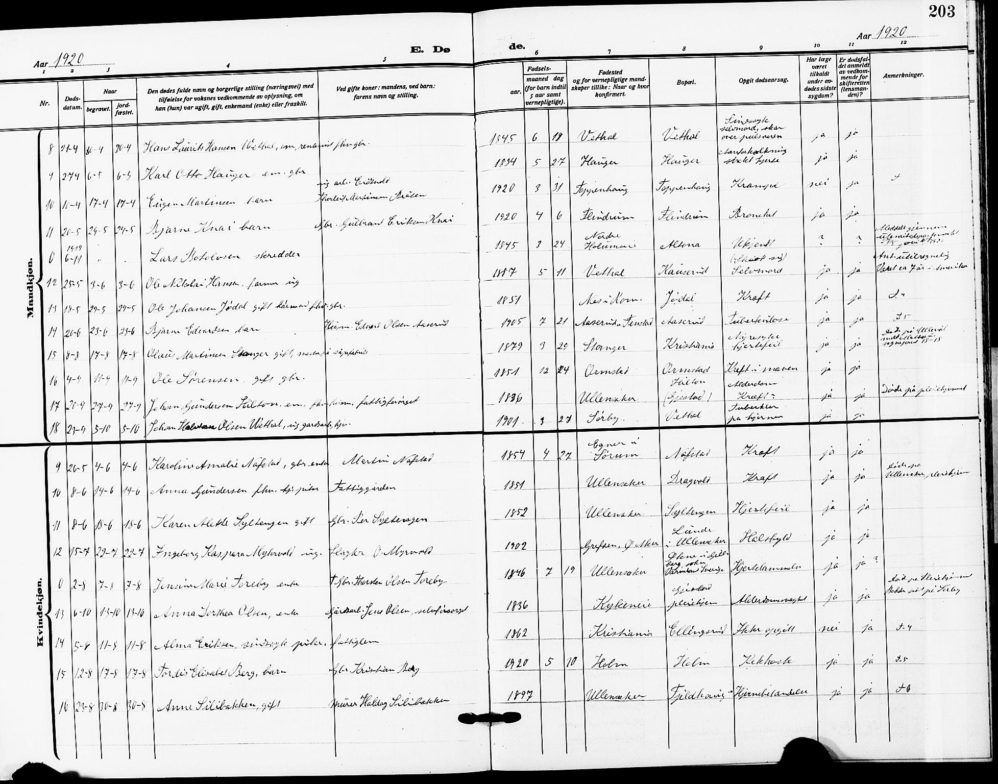 SAO, Ullensaker prestekontor Kirkebøker, G/Ga/L0003: Klokkerbok nr. I 3, 1914-1929, s. 203