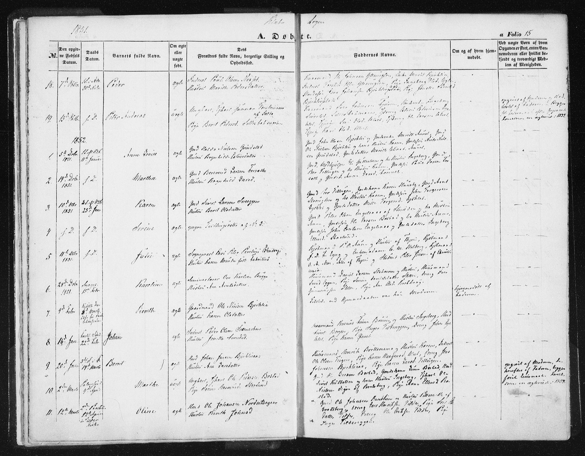 SAT, Ministerialprotokoller, klokkerbøker og fødselsregistre - Sør-Trøndelag, 618/L0441: Ministerialbok nr. 618A05, 1843-1862, s. 15