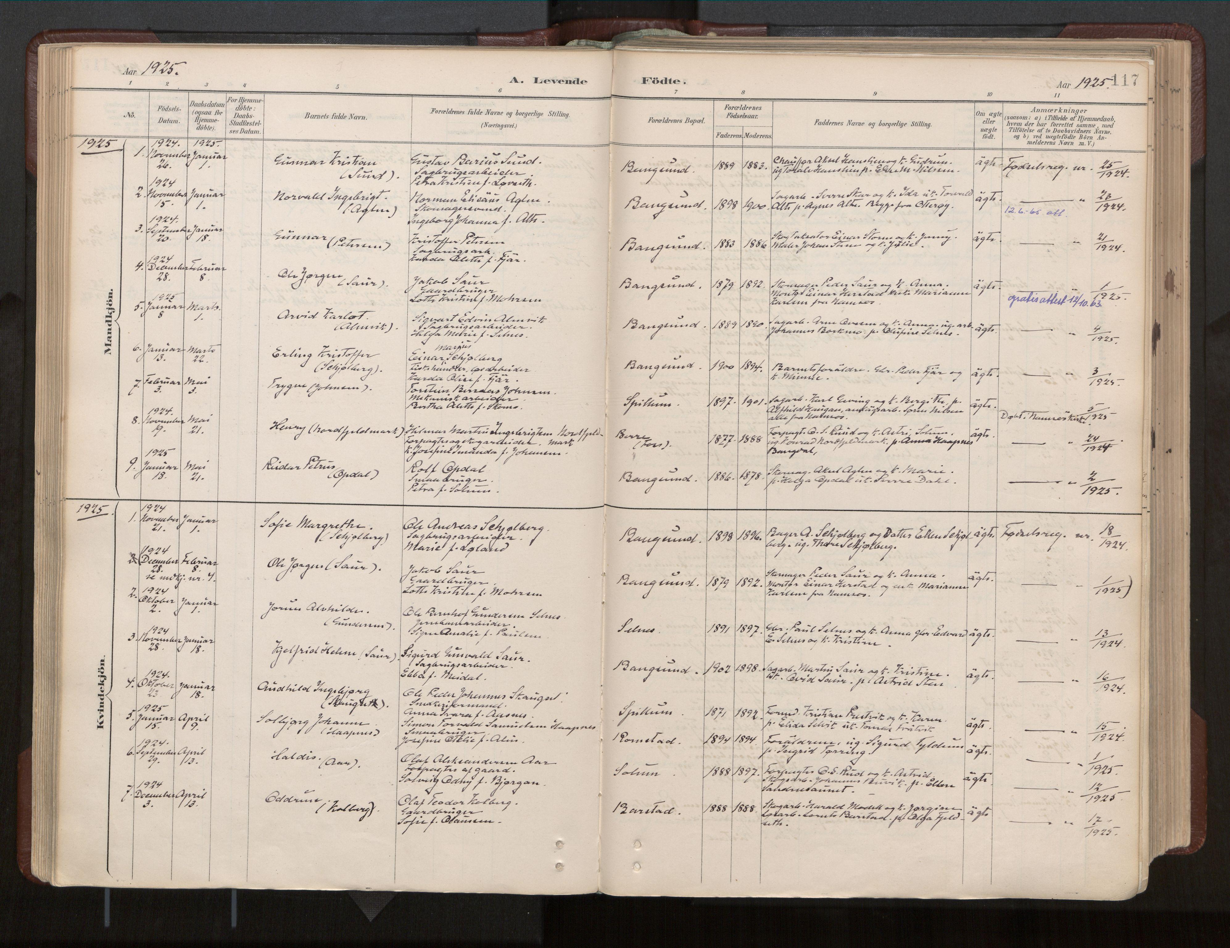 SAT, Ministerialprotokoller, klokkerbøker og fødselsregistre - Nord-Trøndelag, 770/L0589: Ministerialbok nr. 770A03, 1887-1929, s. 117