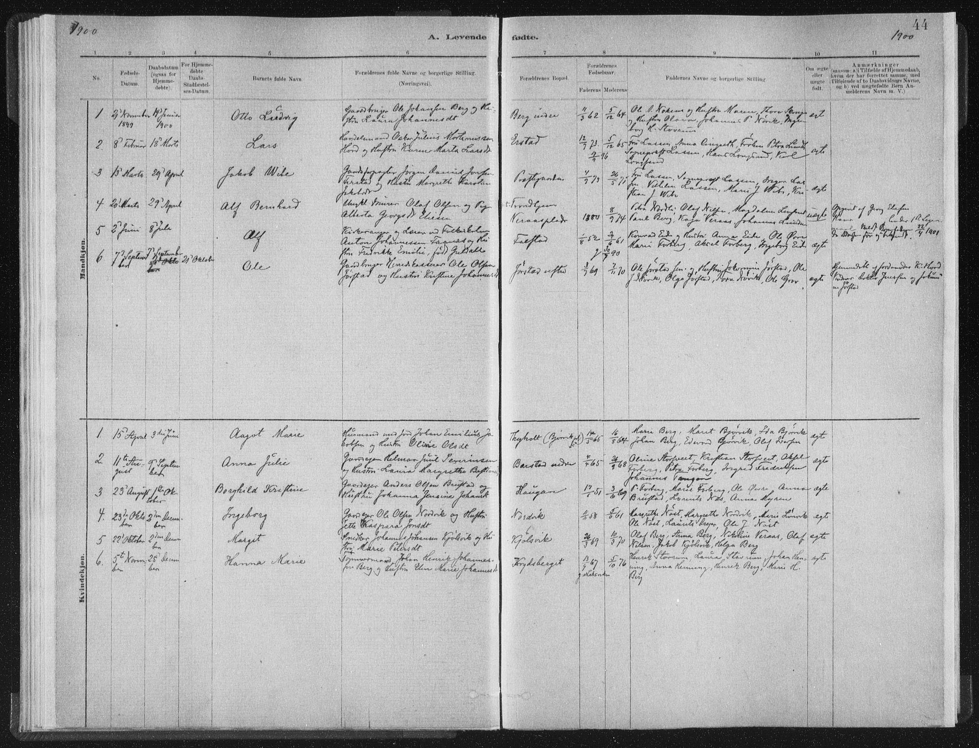 SAT, Ministerialprotokoller, klokkerbøker og fødselsregistre - Nord-Trøndelag, 722/L0220: Ministerialbok nr. 722A07, 1881-1908, s. 44