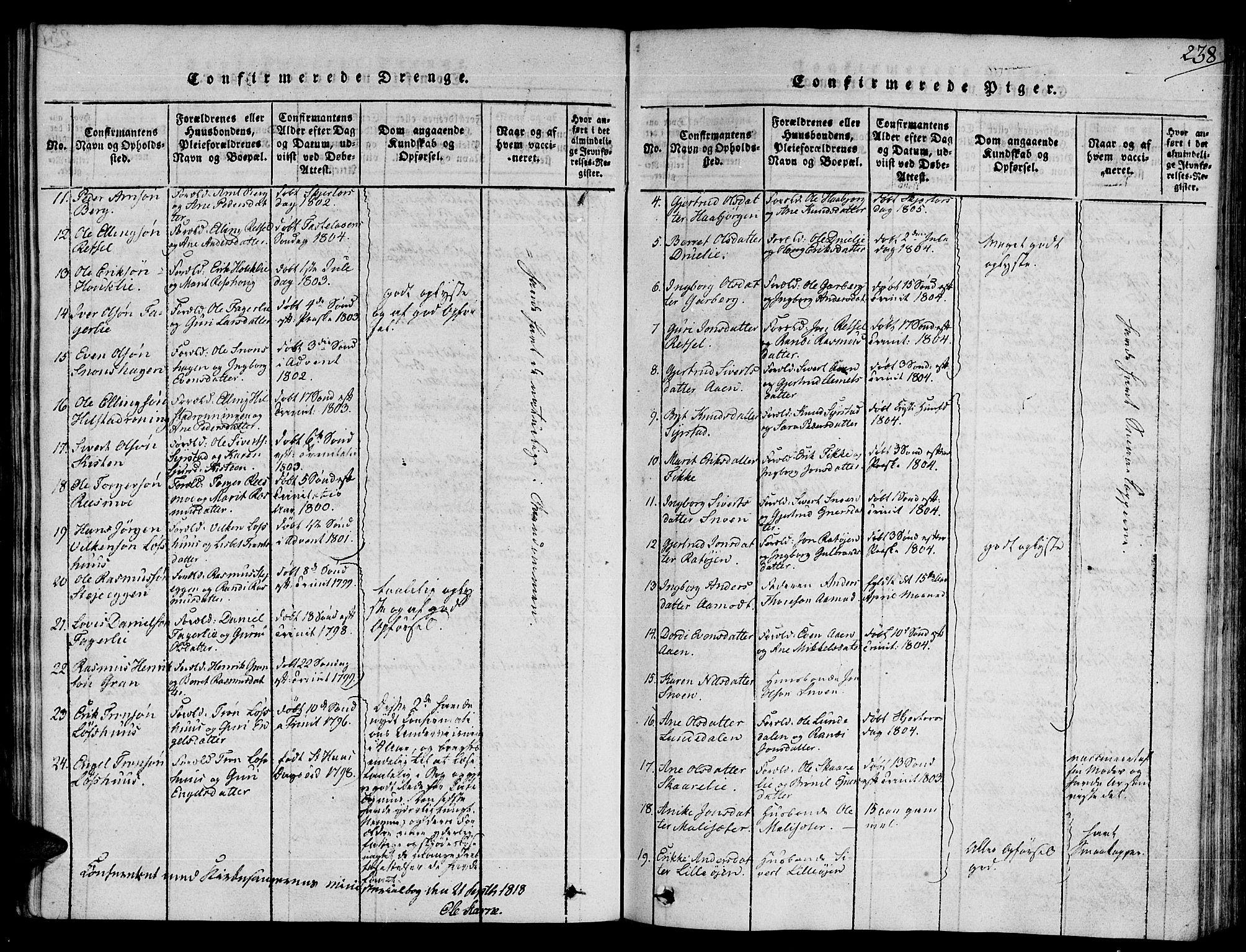 SAT, Ministerialprotokoller, klokkerbøker og fødselsregistre - Sør-Trøndelag, 672/L0853: Ministerialbok nr. 672A06 /1, 1816-1829, s. 238