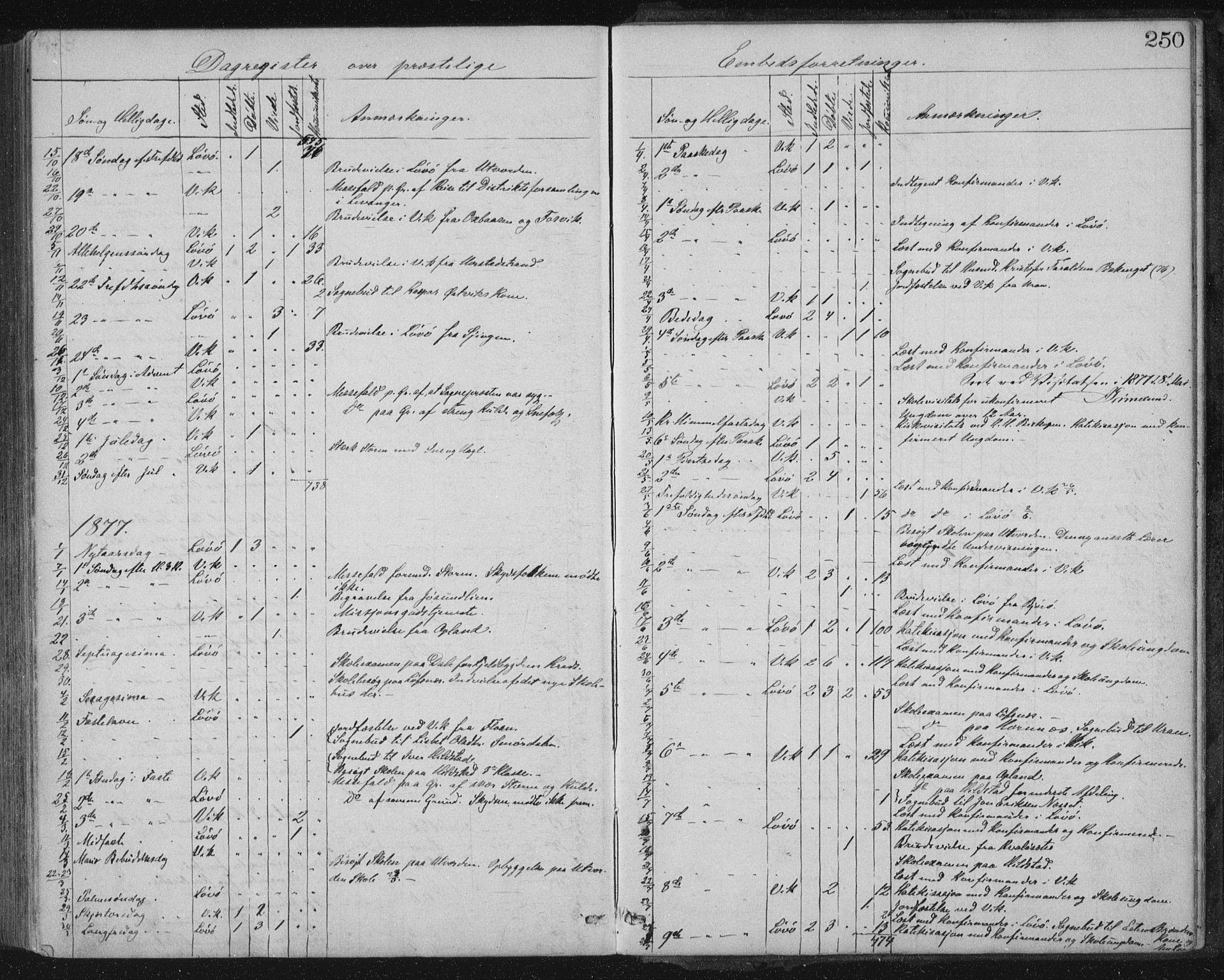SAT, Ministerialprotokoller, klokkerbøker og fødselsregistre - Nord-Trøndelag, 771/L0596: Ministerialbok nr. 771A03, 1870-1884, s. 250