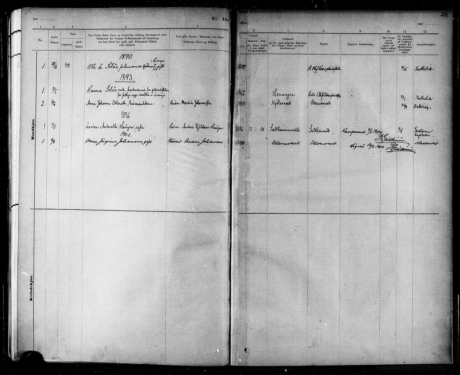 SAT, Ministerialprotokoller, klokkerbøker og fødselsregistre - Nord-Trøndelag, 721/L0208: Klokkerbok nr. 721C01, 1880-1917, s. 254