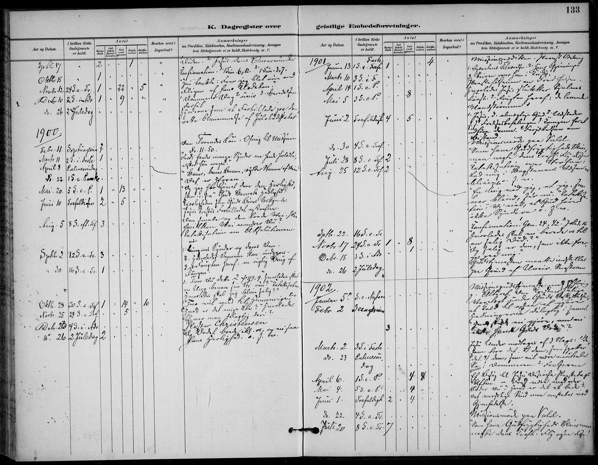 SAKO, Solum kirkebøker, F/Fc/L0002: Ministerialbok nr. III 2, 1892-1906, s. 133