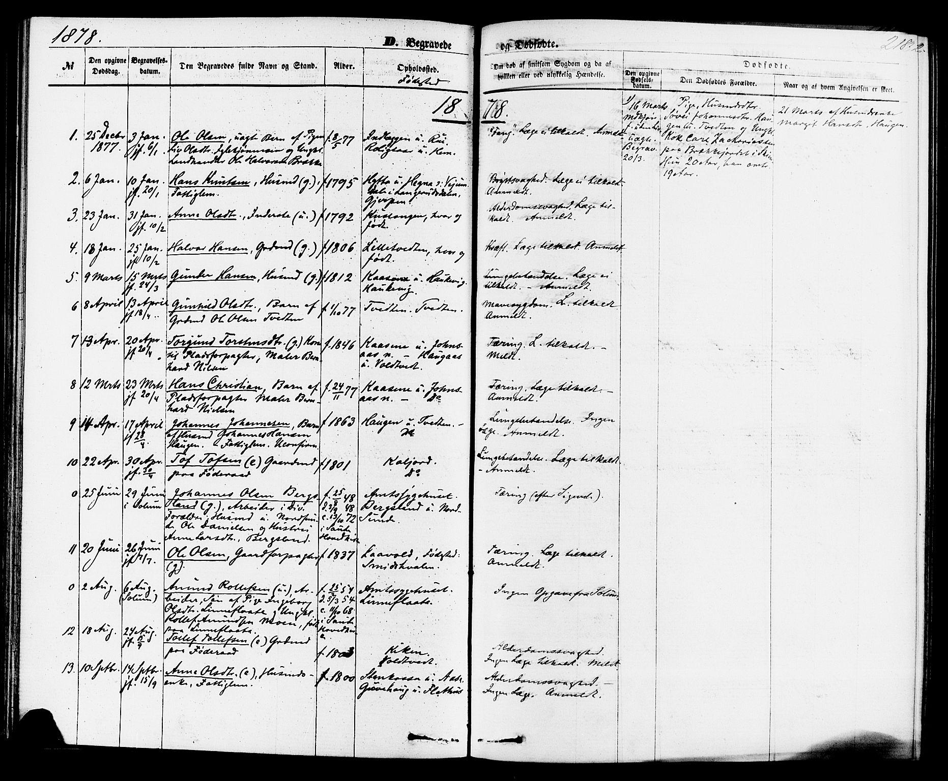 SAKO, Sauherad kirkebøker, F/Fa/L0008: Ministerialbok nr. I 8, 1873-1886, s. 218