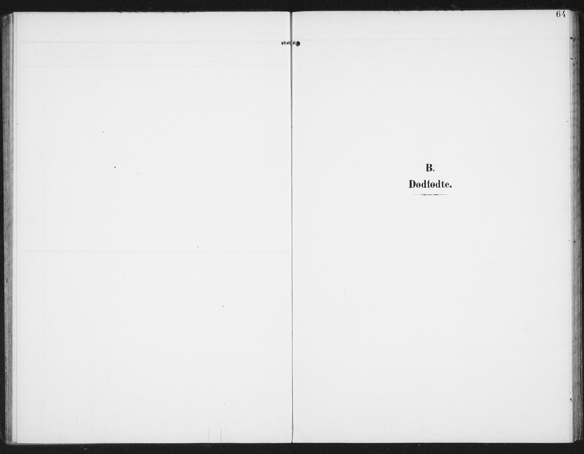 SAT, Ministerialprotokoller, klokkerbøker og fødselsregistre - Nordland, 886/L1221: Ministerialbok nr. 886A03, 1903-1913, s. 64