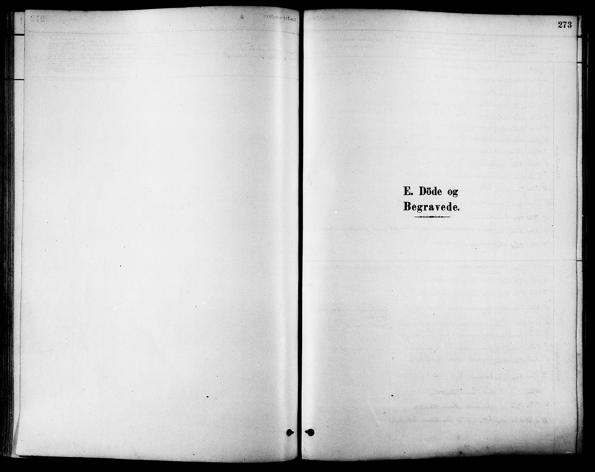 SAT, Ministerialprotokoller, klokkerbøker og fødselsregistre - Sør-Trøndelag, 630/L0496: Ministerialbok nr. 630A09, 1879-1895, s. 273