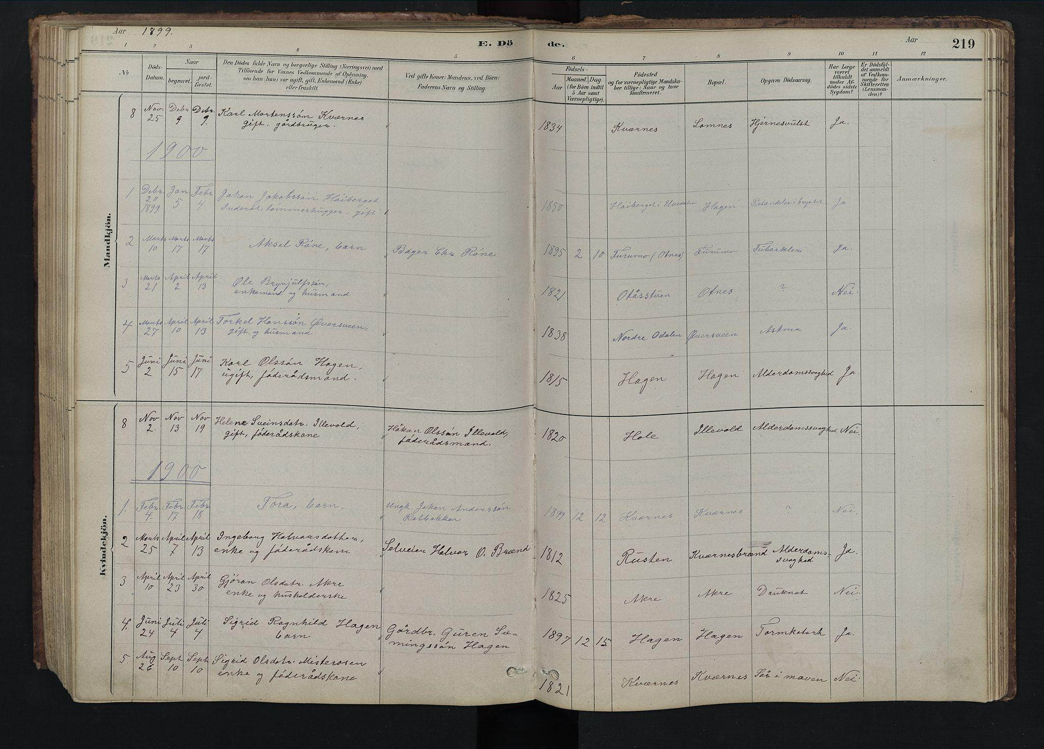 SAH, Rendalen prestekontor, H/Ha/Hab/L0009: Klokkerbok nr. 9, 1879-1902, s. 219