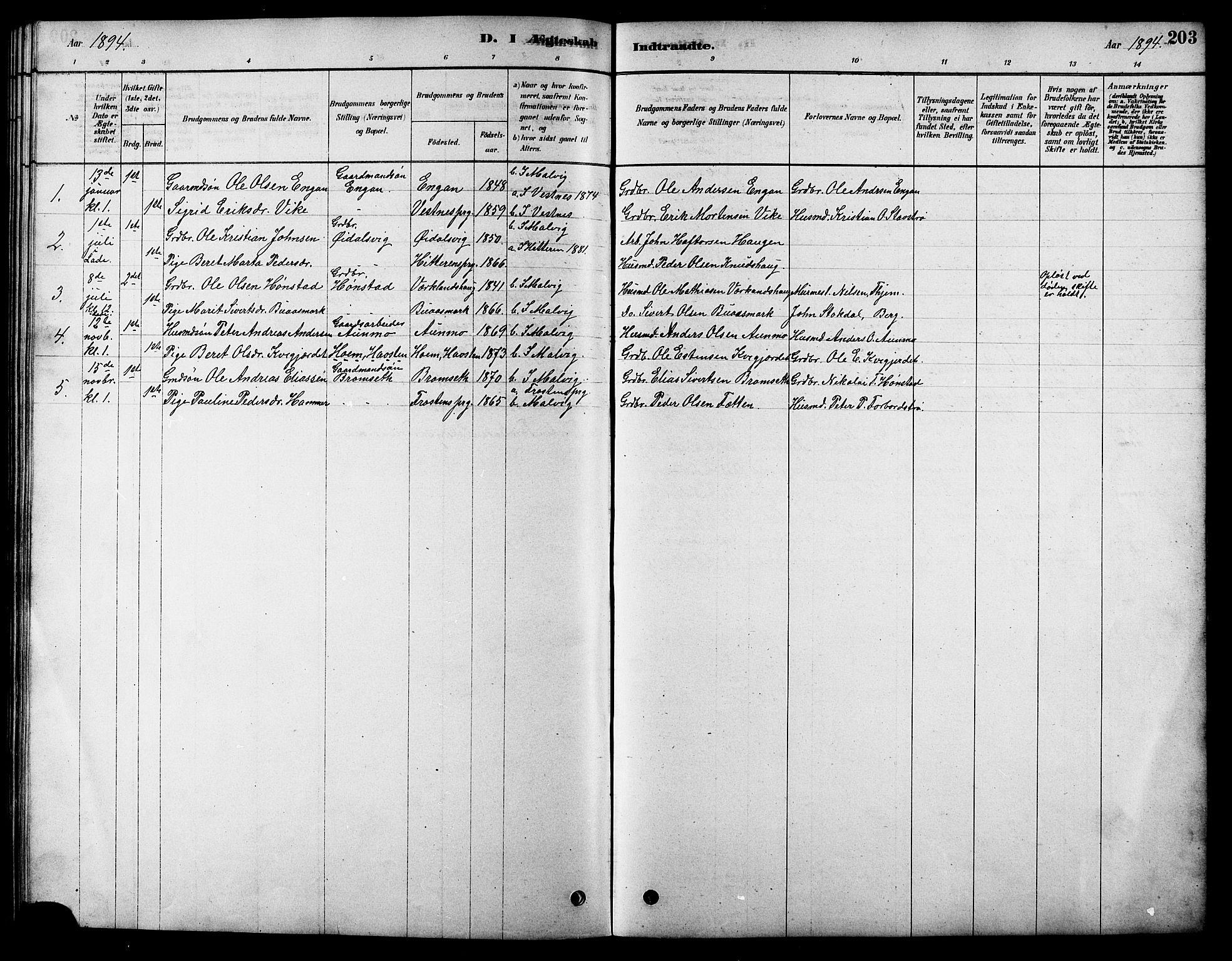 SAT, Ministerialprotokoller, klokkerbøker og fødselsregistre - Sør-Trøndelag, 616/L0423: Klokkerbok nr. 616C06, 1878-1903, s. 203