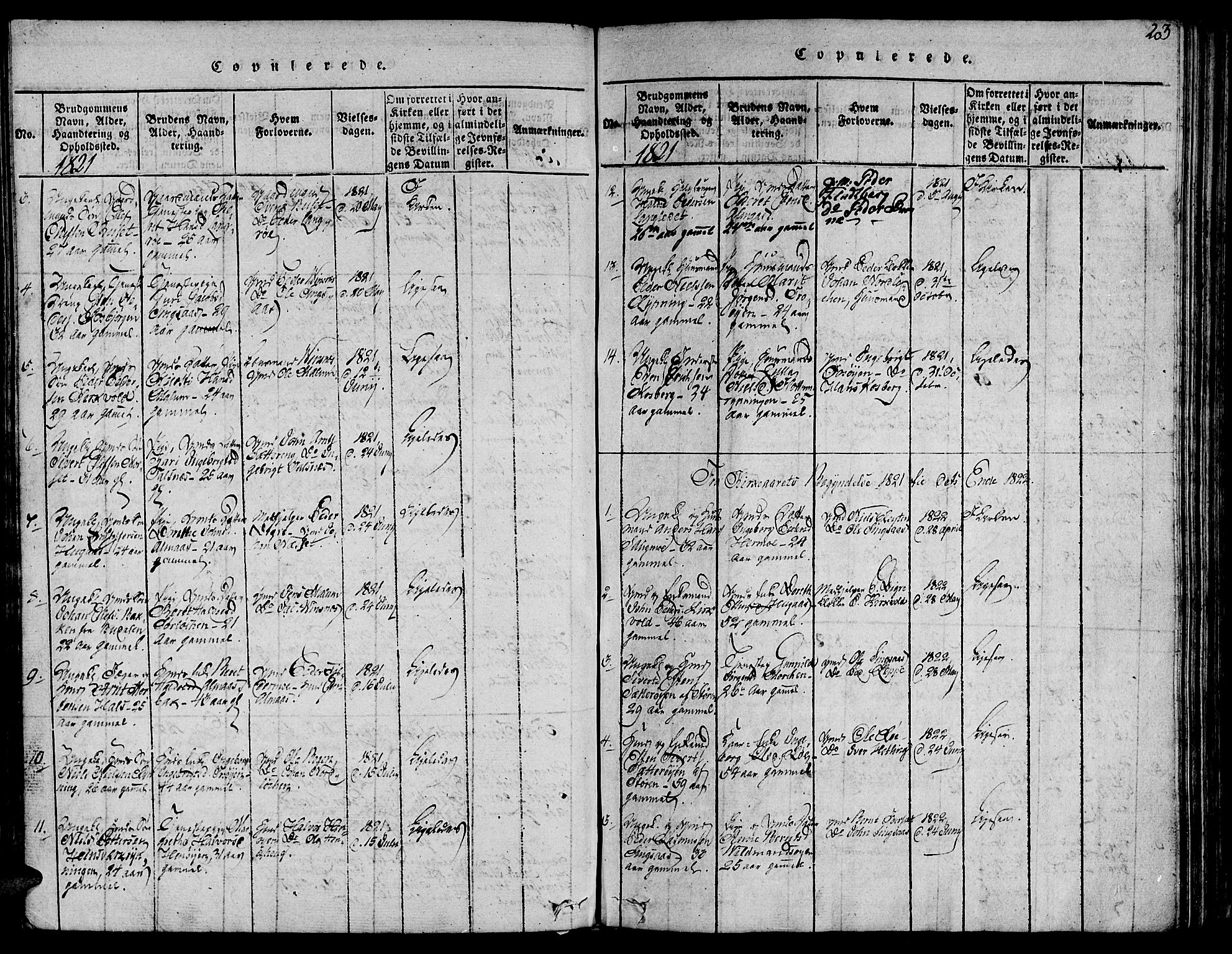 SAT, Ministerialprotokoller, klokkerbøker og fødselsregistre - Sør-Trøndelag, 685/L0955: Ministerialbok nr. 685A03 /2, 1817-1829, s. 203