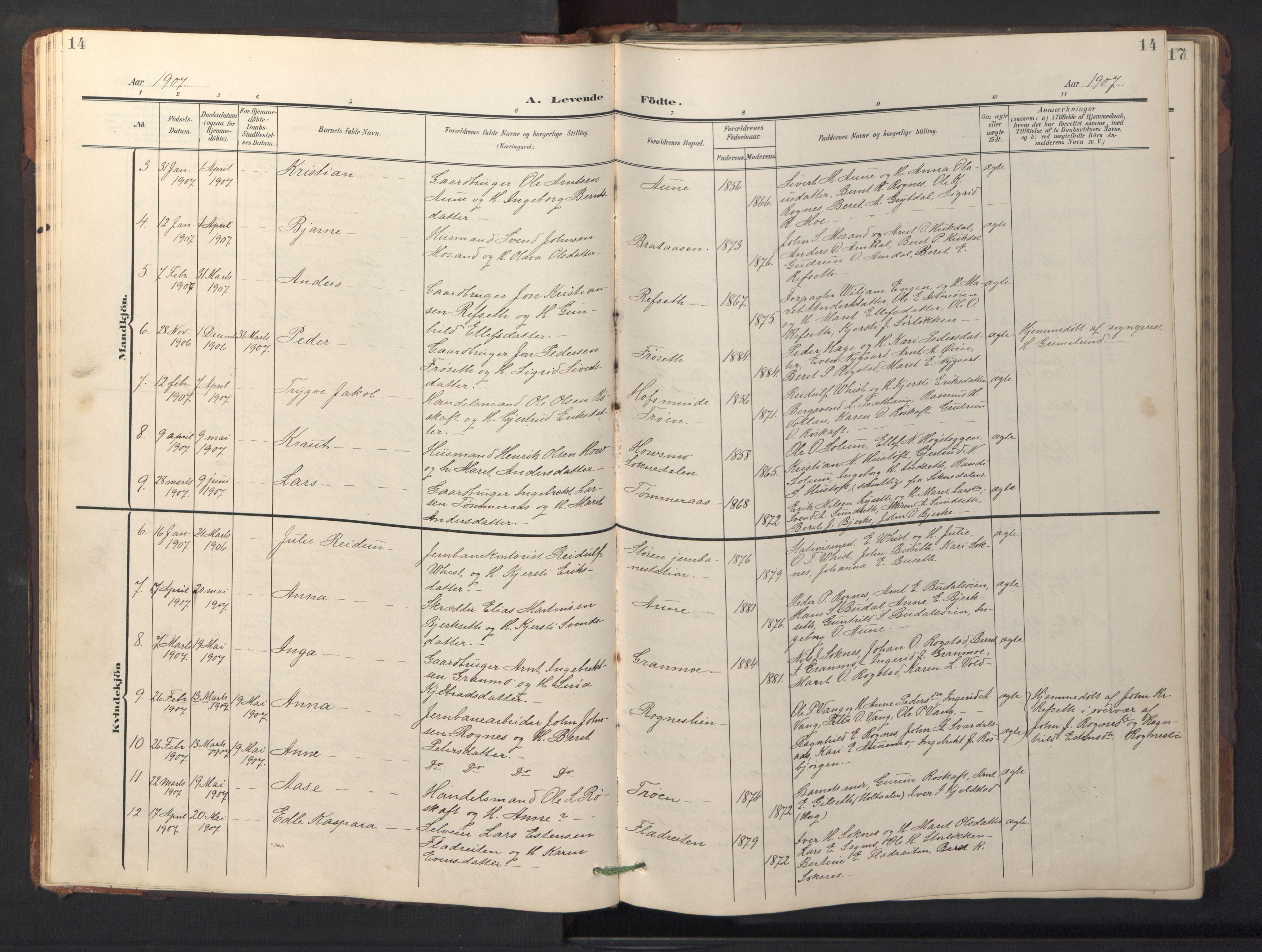SAT, Ministerialprotokoller, klokkerbøker og fødselsregistre - Sør-Trøndelag, 687/L1019: Klokkerbok nr. 687C03, 1904-1931, s. 14