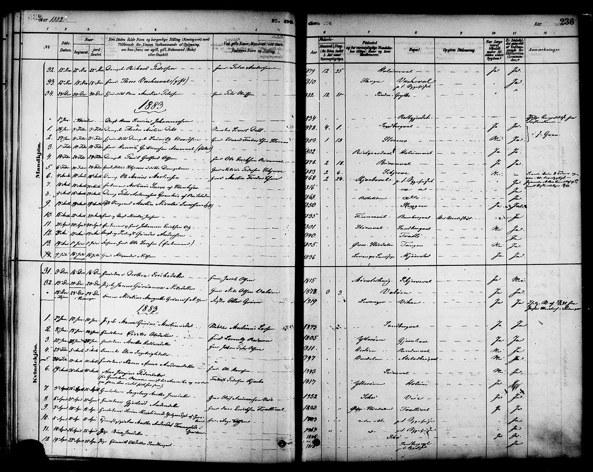 SAT, Ministerialprotokoller, klokkerbøker og fødselsregistre - Nord-Trøndelag, 717/L0159: Ministerialbok nr. 717A09, 1878-1898, s. 236