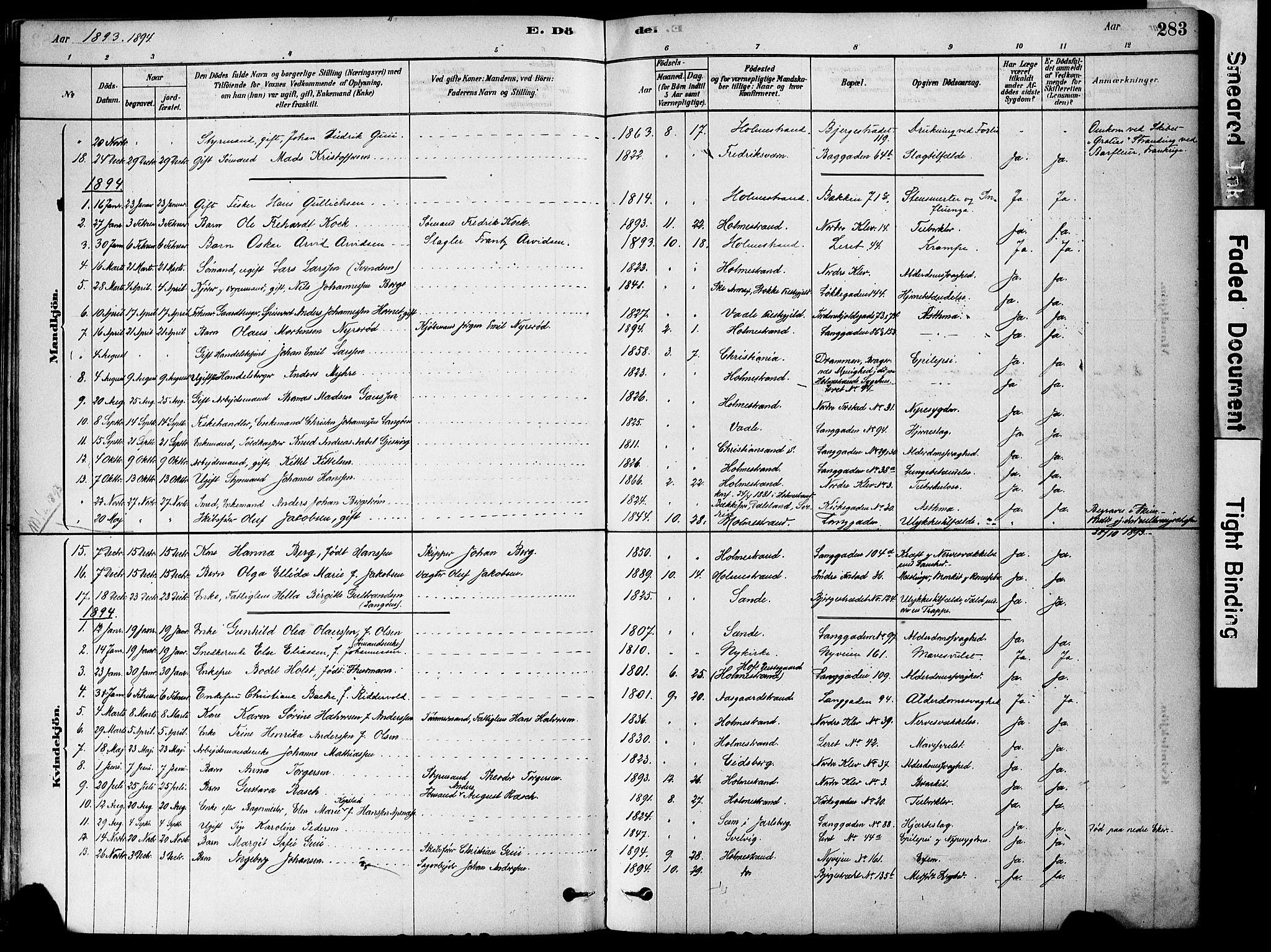 SAKO, Holmestrand kirkebøker, F/Fa/L0004: Ministerialbok nr. 4, 1880-1901, s. 283