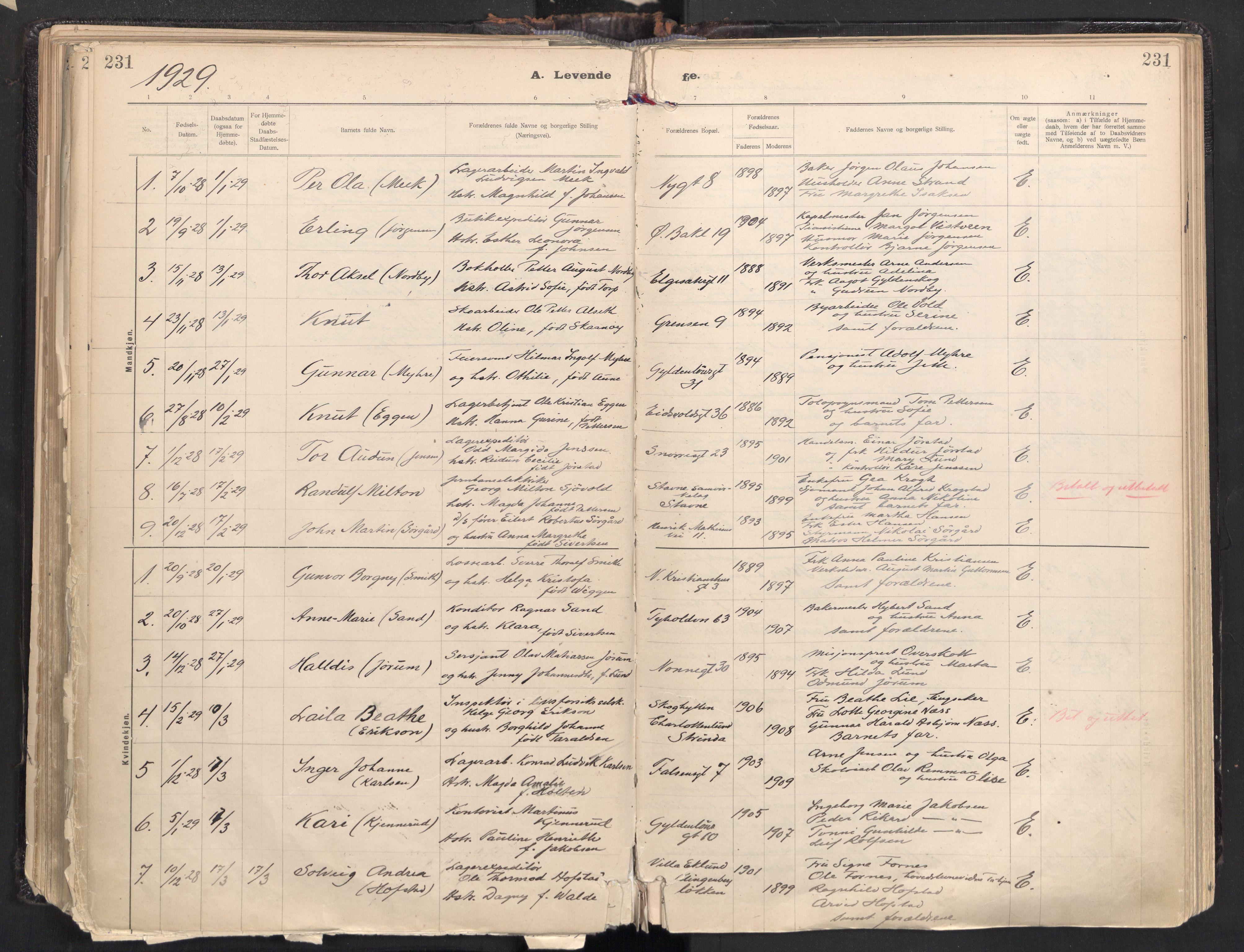 SAT, Ministerialprotokoller, klokkerbøker og fødselsregistre - Sør-Trøndelag, 604/L0205: Ministerialbok nr. 604A25, 1917-1932, s. 231