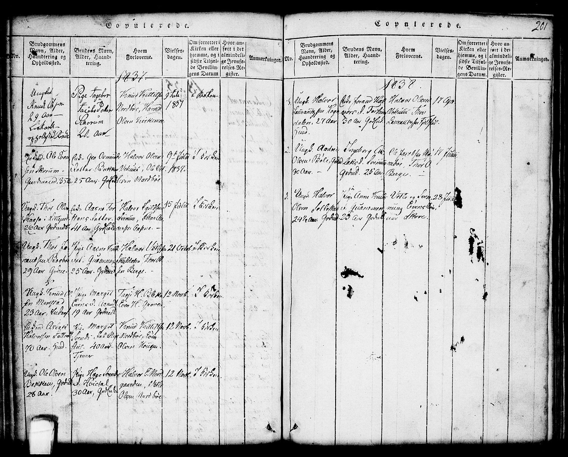 SAKO, Seljord kirkebøker, G/Gc/L0001: Klokkerbok nr. III 1, 1815-1849, s. 201