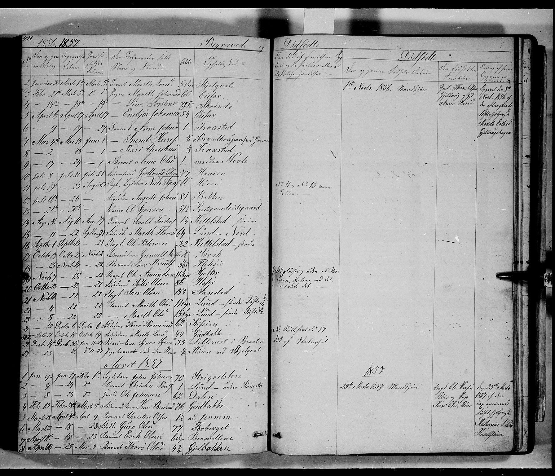 SAH, Lom prestekontor, L/L0004: Klokkerbok nr. 4, 1845-1864, s. 424-425