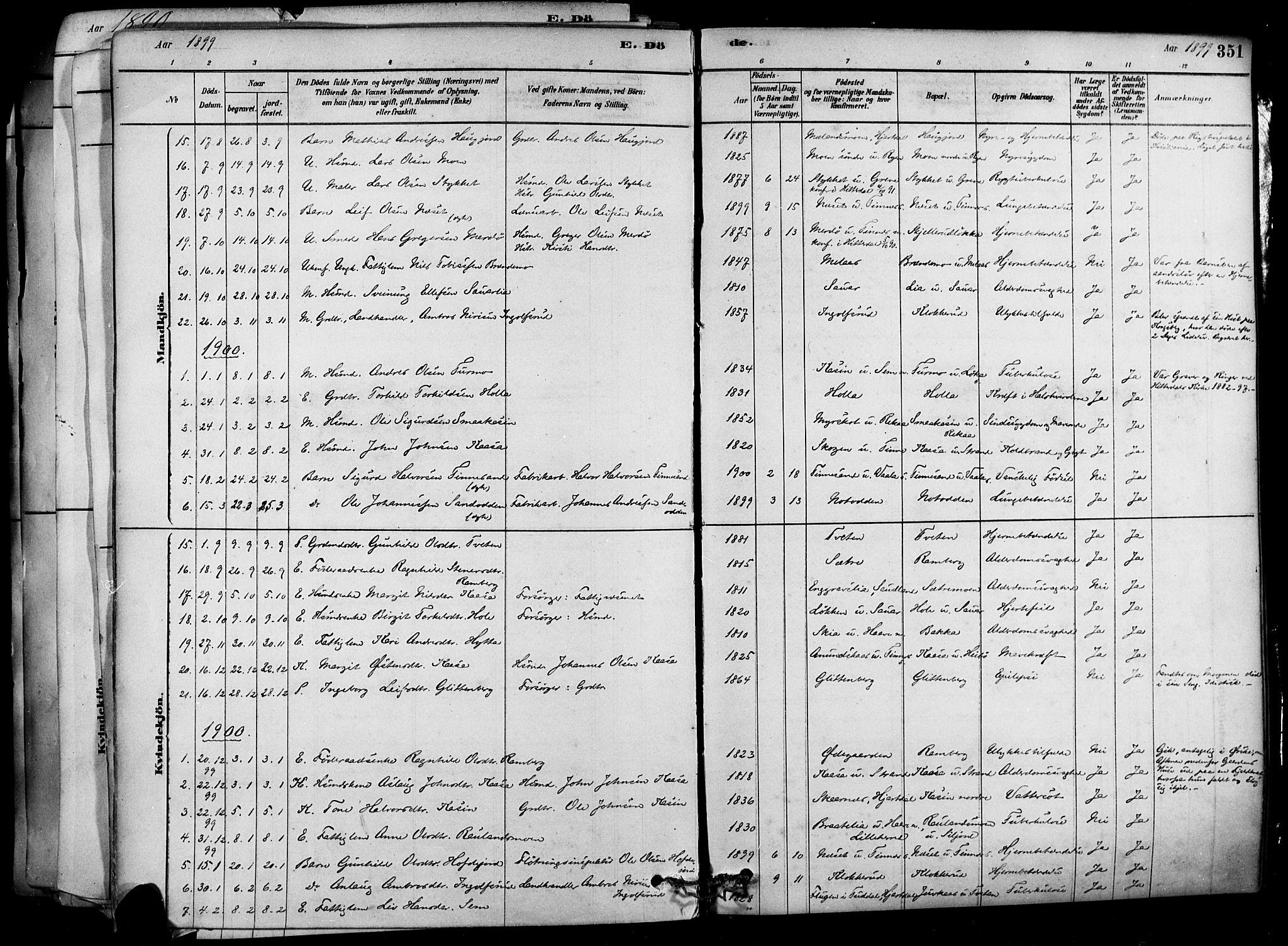 SAKO, Heddal kirkebøker, F/Fa/L0008: Ministerialbok nr. I 8, 1878-1903, s. 351