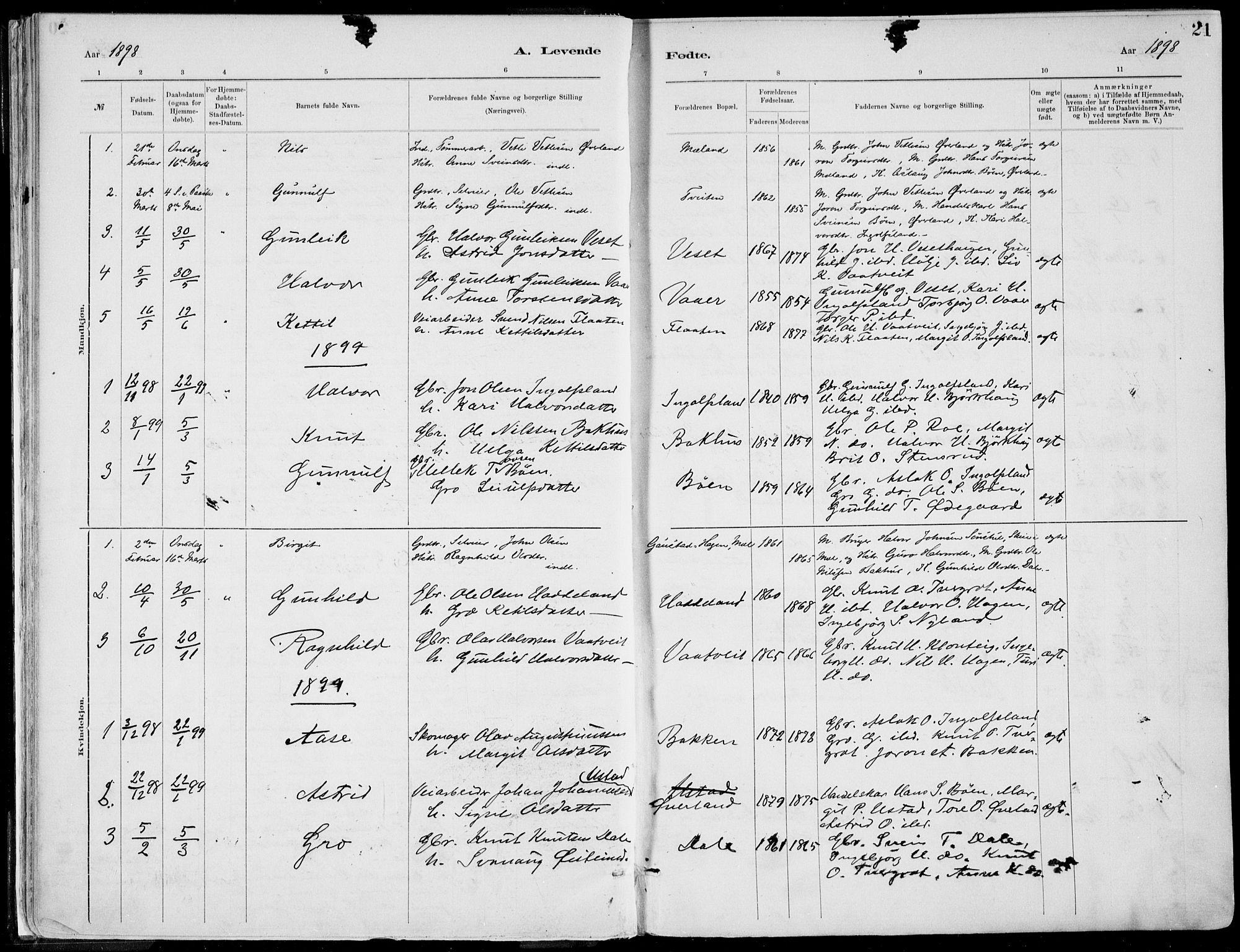 SAKO, Rjukan kirkebøker, F/Fa/L0001: Ministerialbok nr. 1, 1878-1912, s. 21