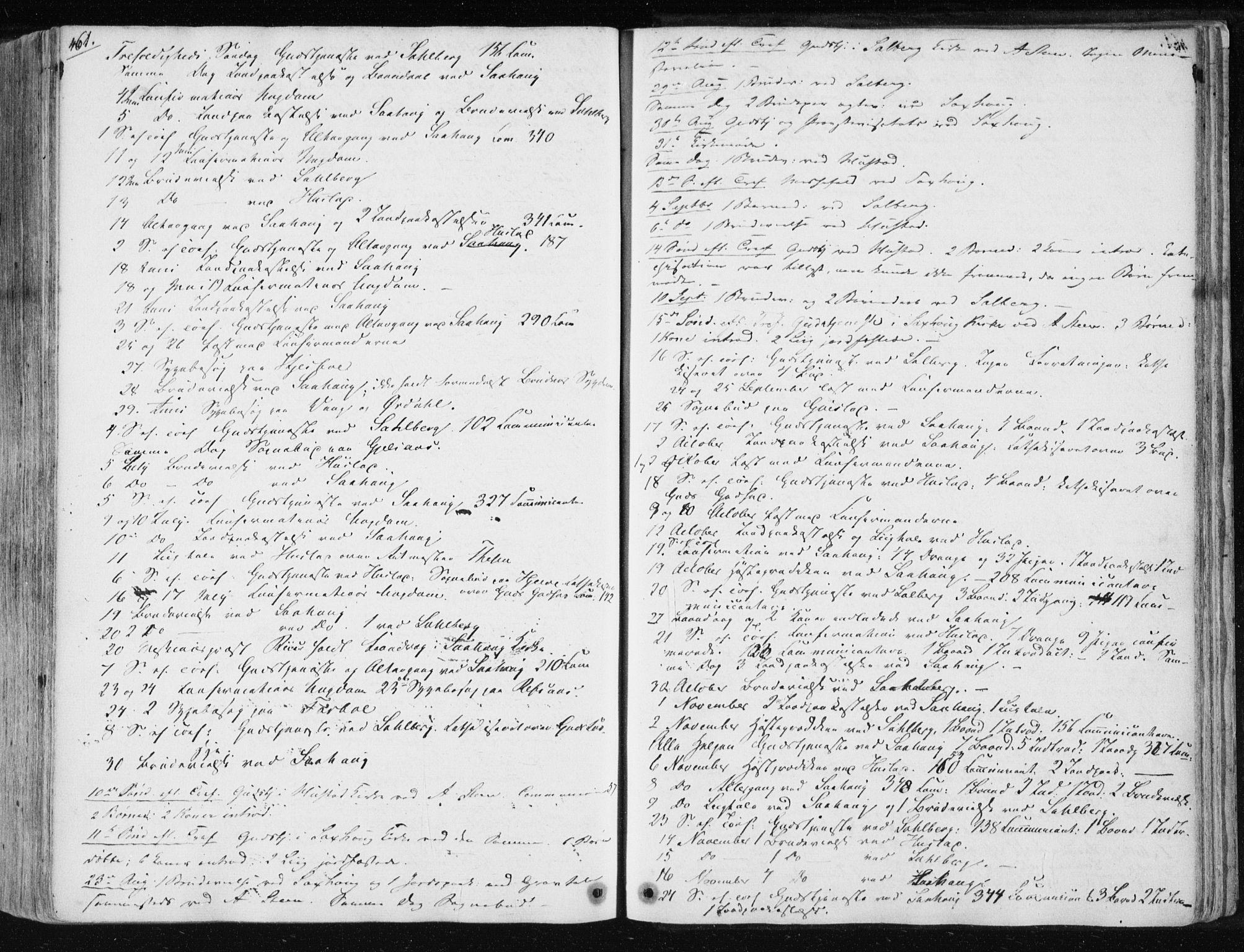 SAT, Ministerialprotokoller, klokkerbøker og fødselsregistre - Nord-Trøndelag, 730/L0280: Ministerialbok nr. 730A07 /1, 1840-1854, s. 461